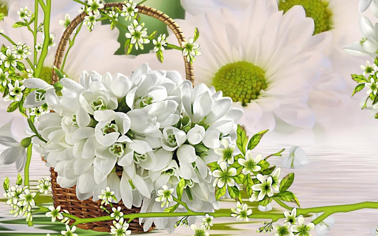 Международный день цветка гифы