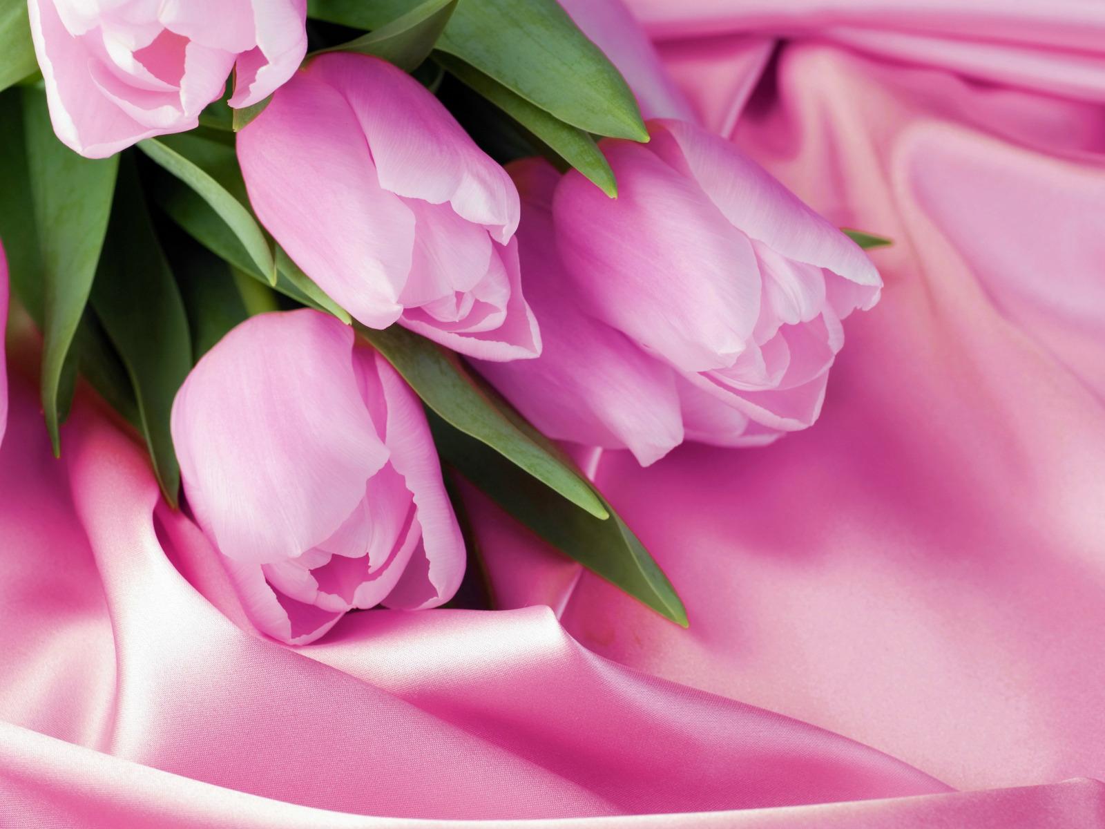 Фоны для открыток цветы, работнику