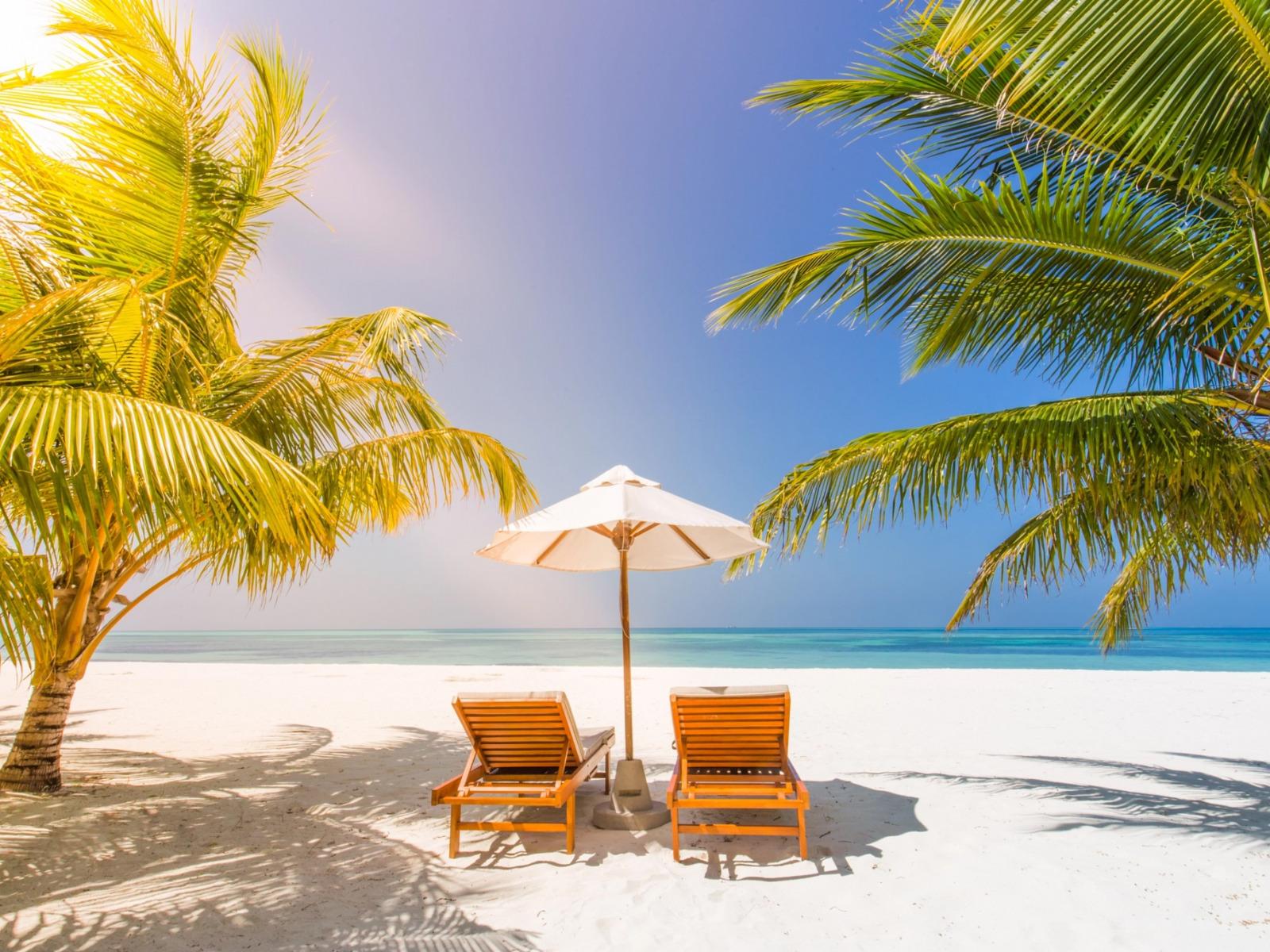 вариант для картинки отдых на море у пальмы любимая многими
