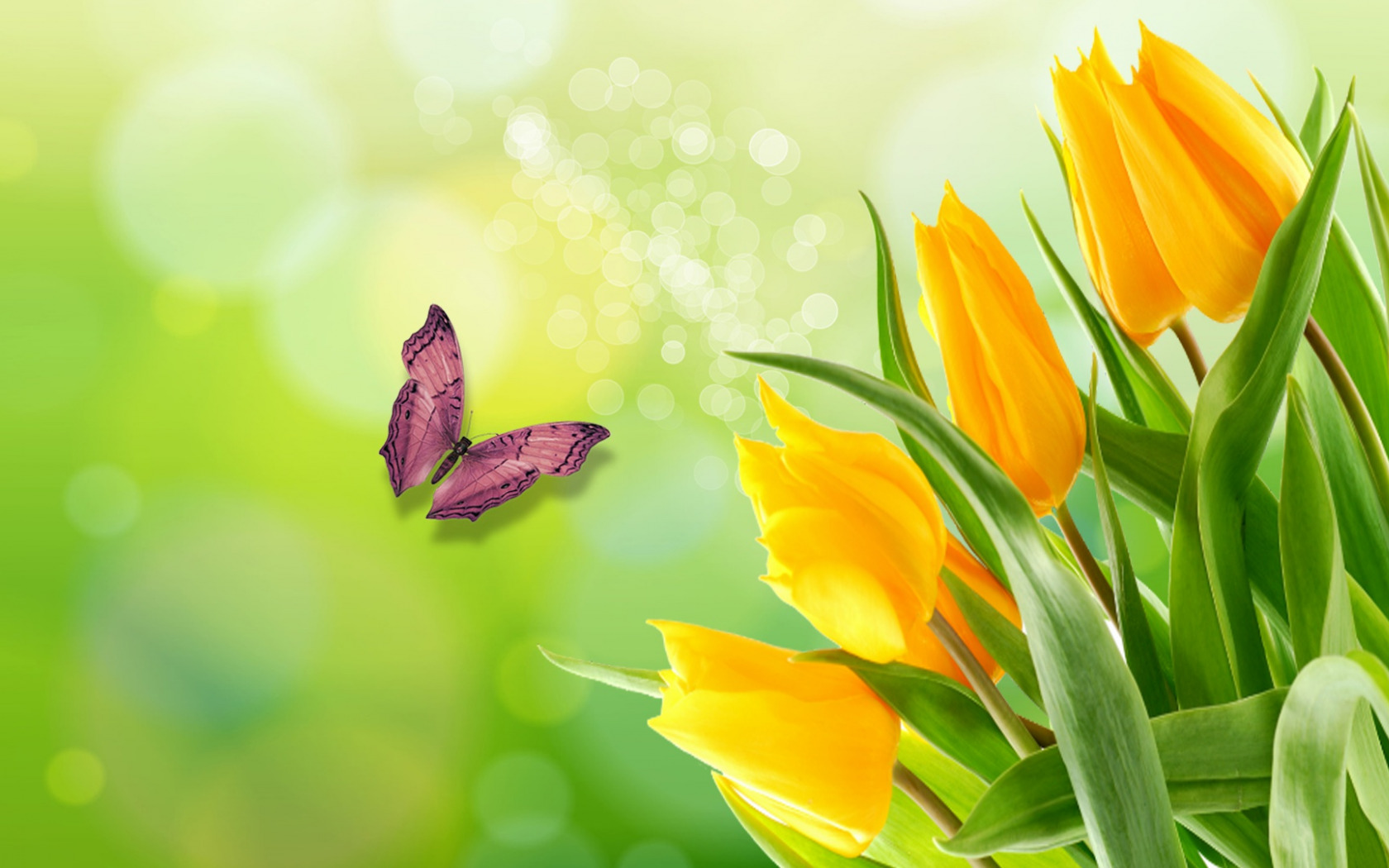 цветы,желтые,бабочка  № 664878  скачать