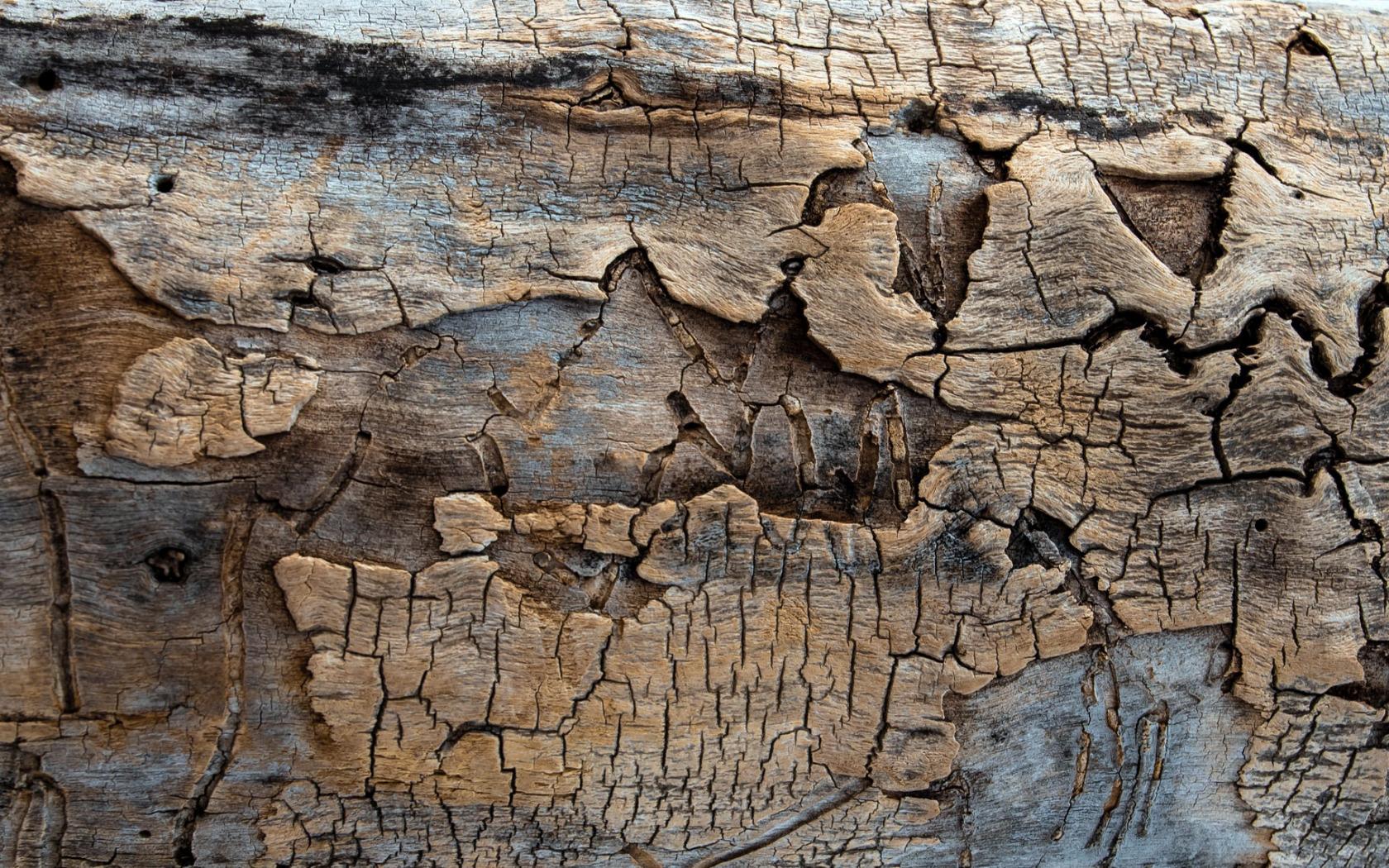 фотообои для стен разрез скалы связанные чернобылем