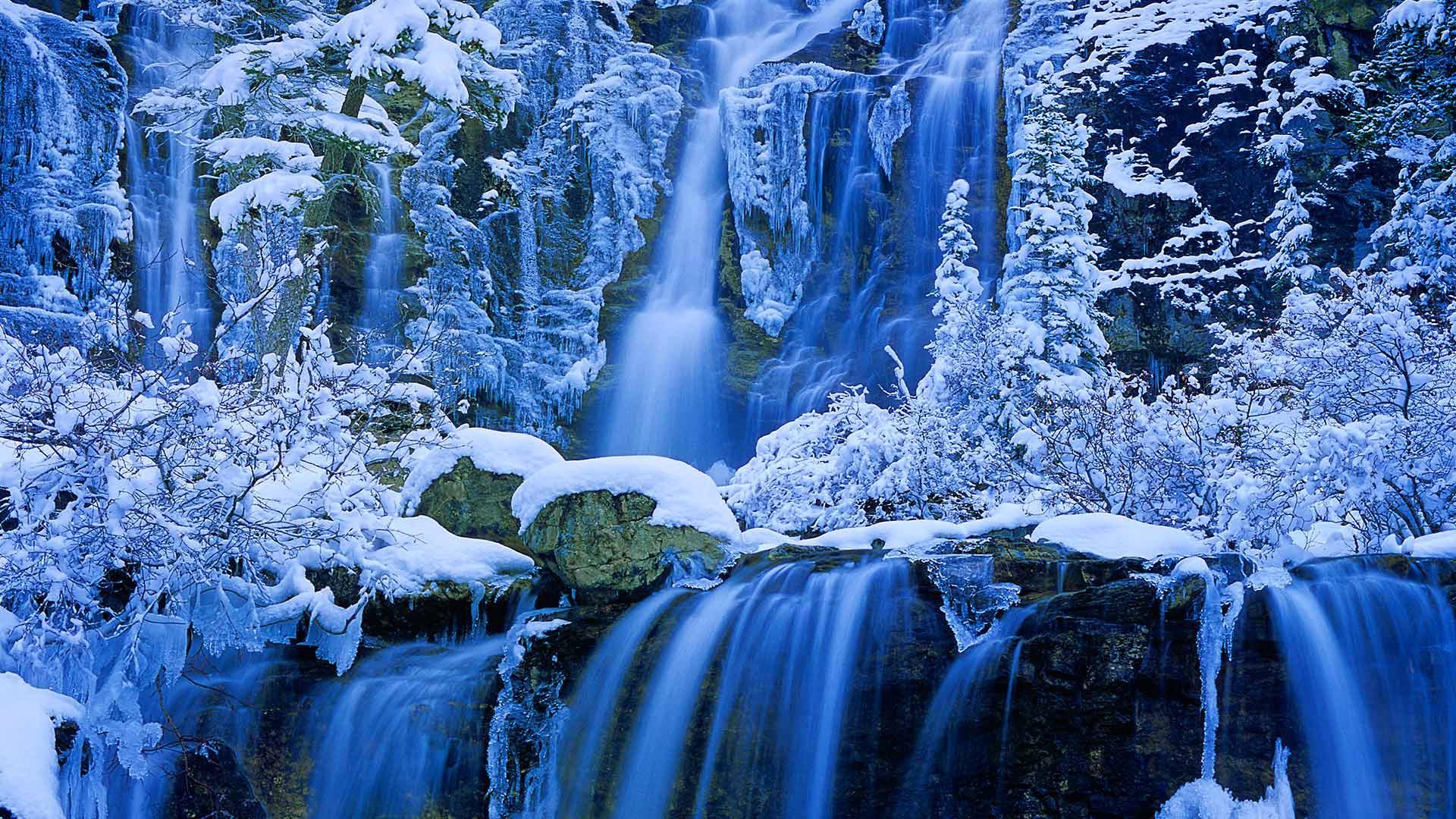 предыдущему опыту живые картинки на комп зима действительна при
