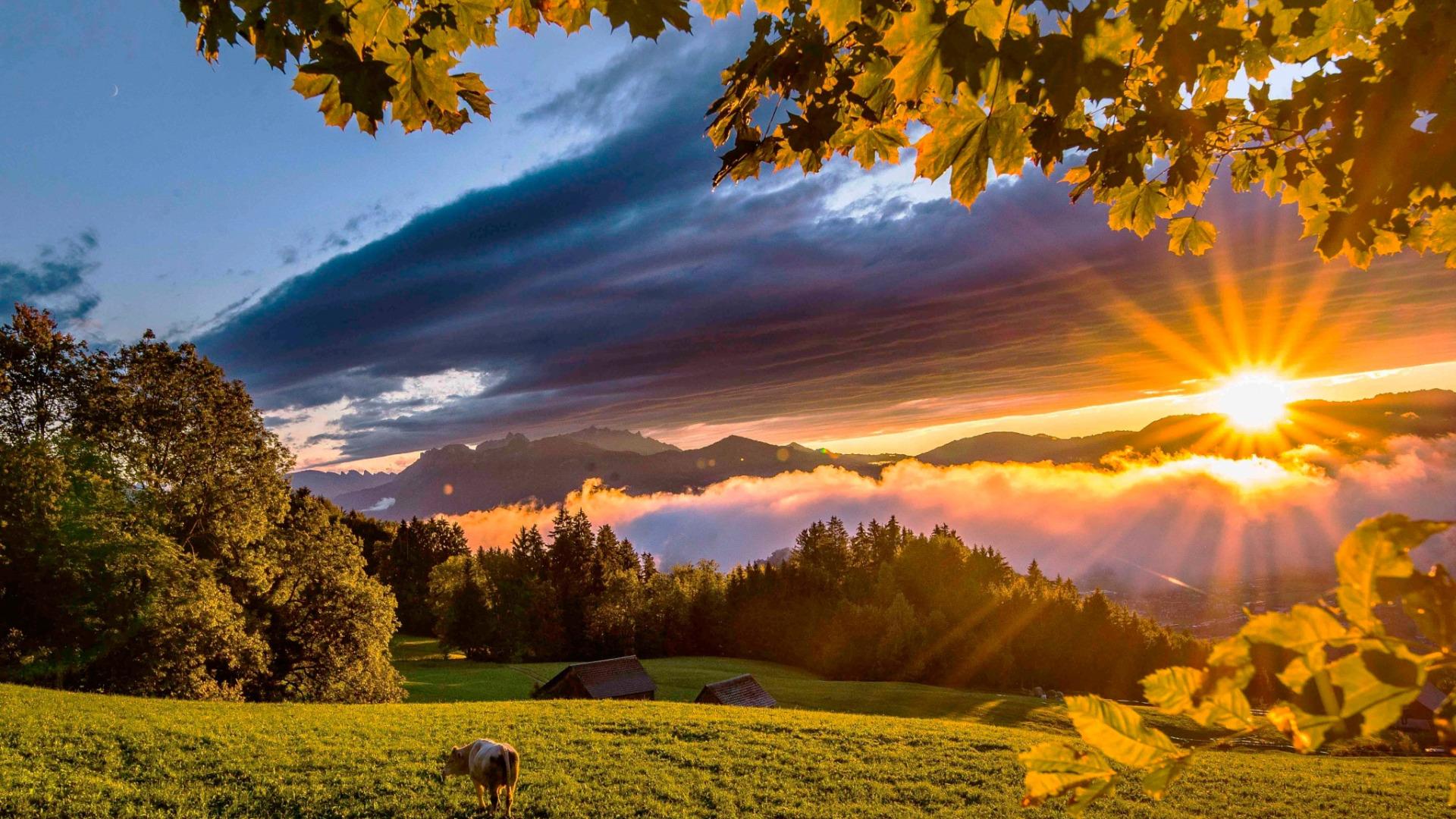 картинка пейзаж солнце испанки