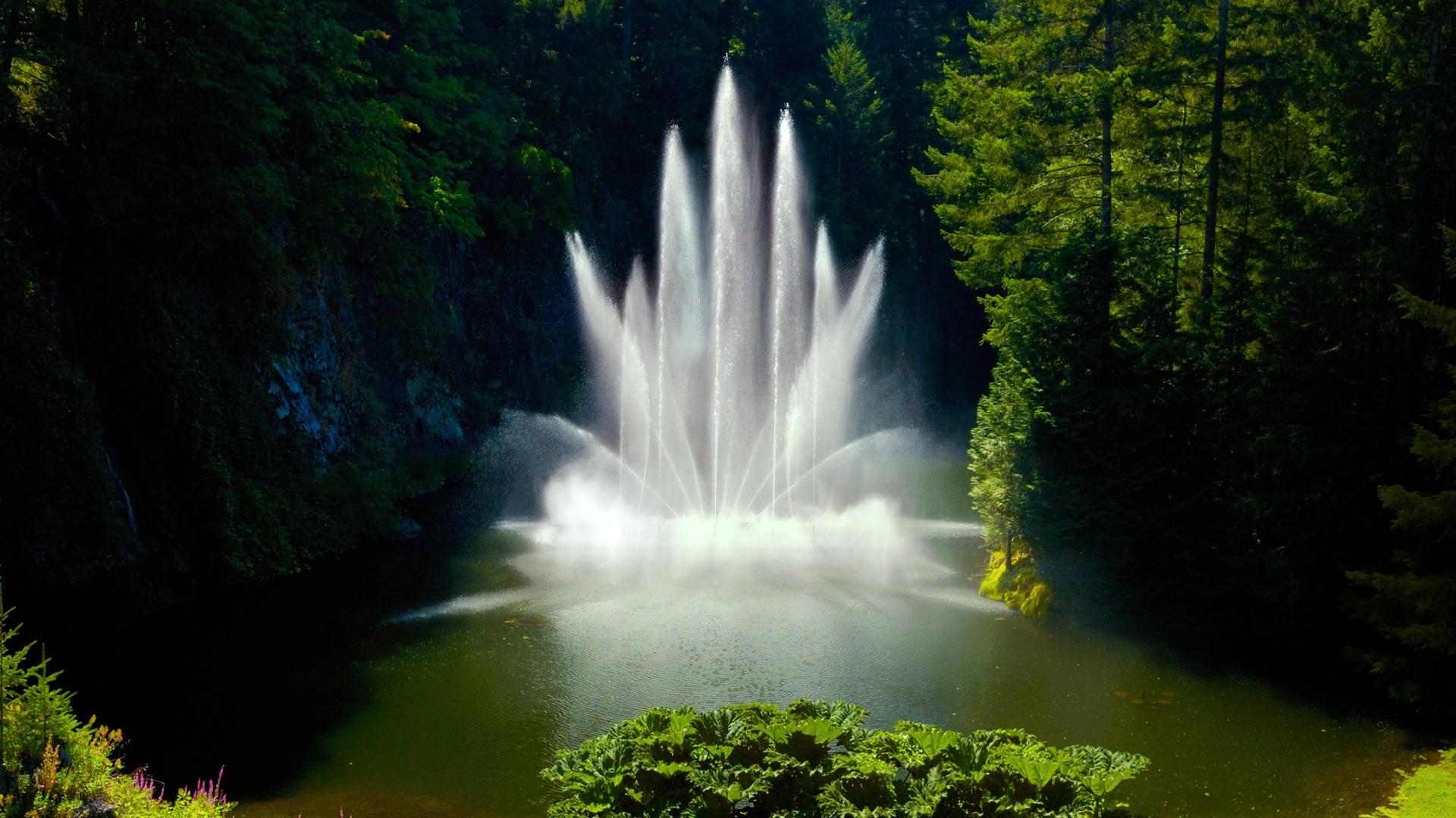 мишулина картинки фонтана природа взгляда глубину