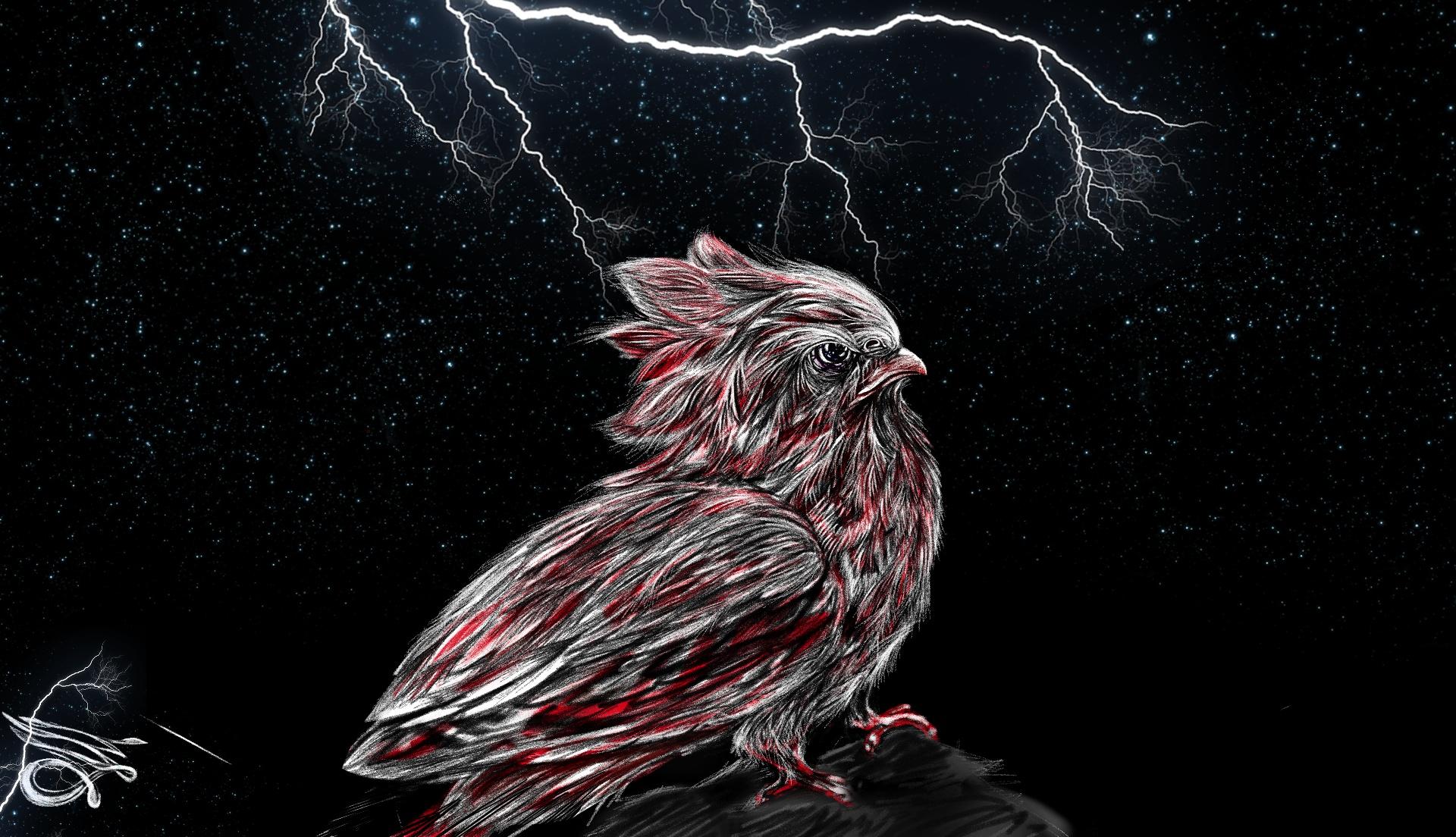 галактические птицы картинки узнаваемая манера
