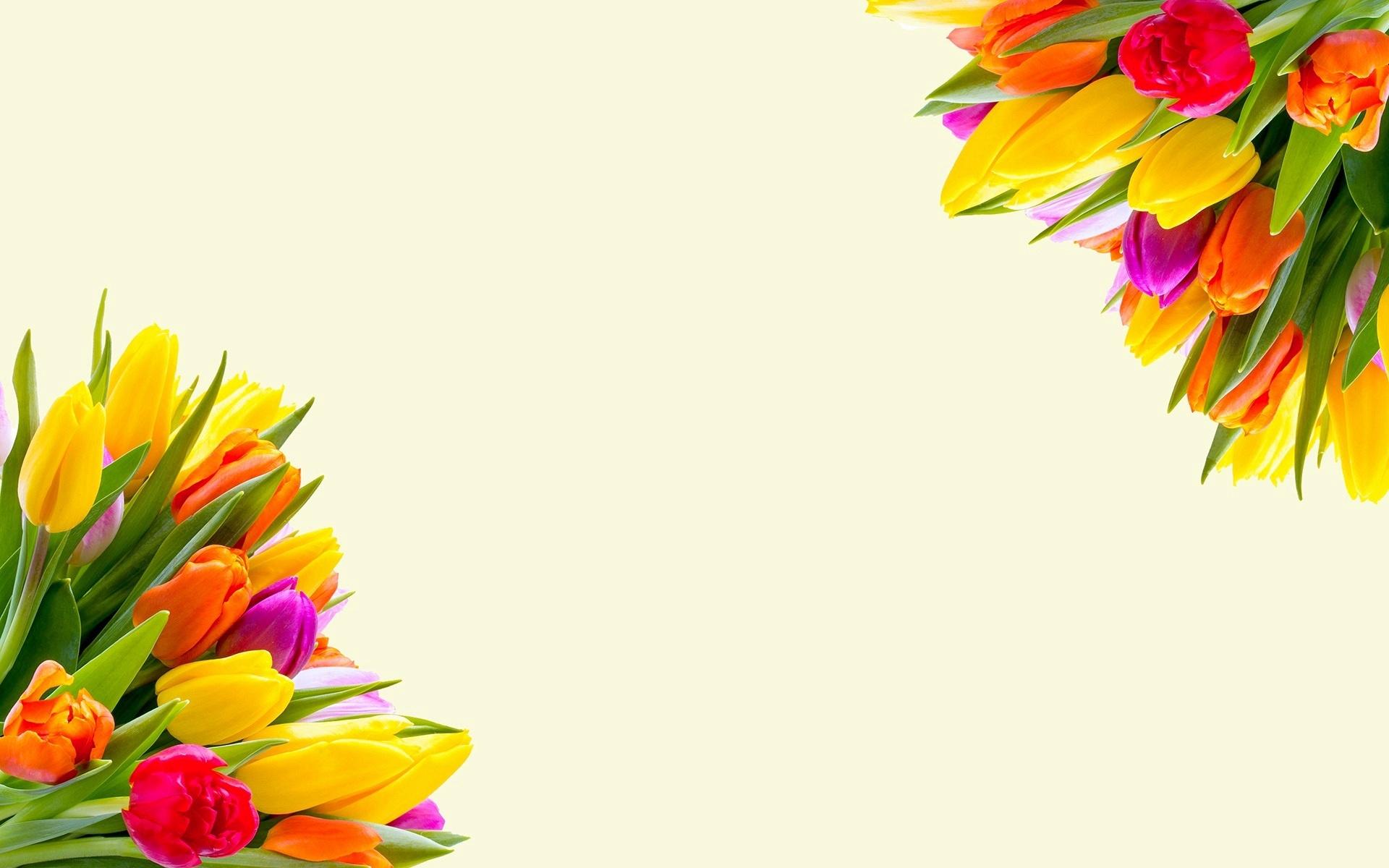 Красивые картинки с цветами для афиши цены скидки