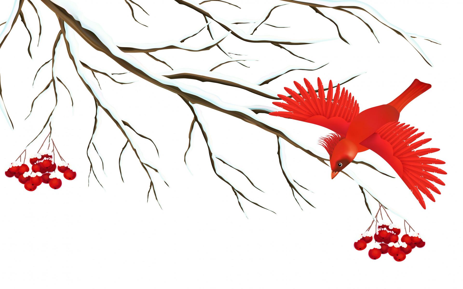 Веточка рябины зимой рисунок