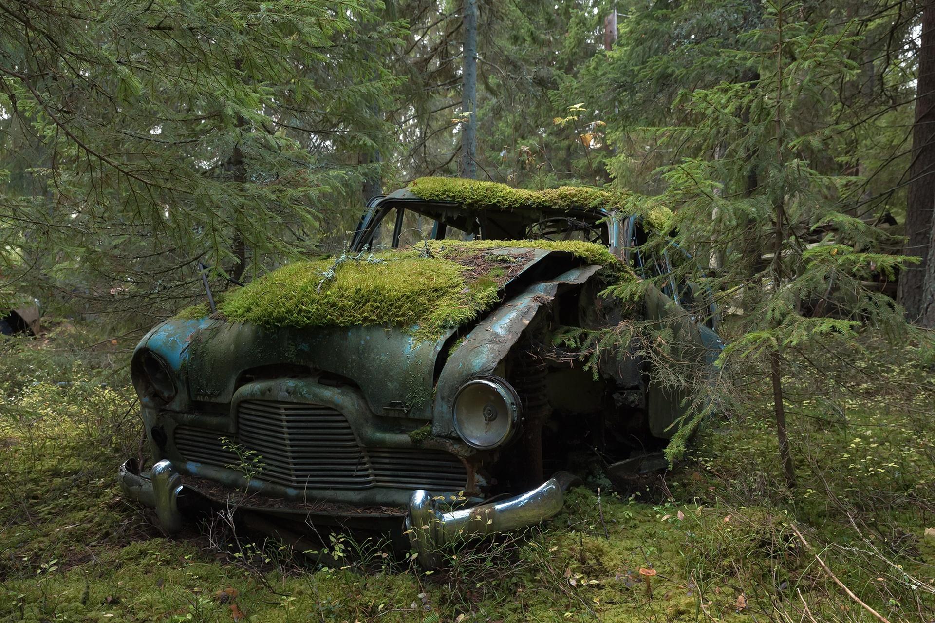 заброшенные авто редкие фото мох сожалению распался