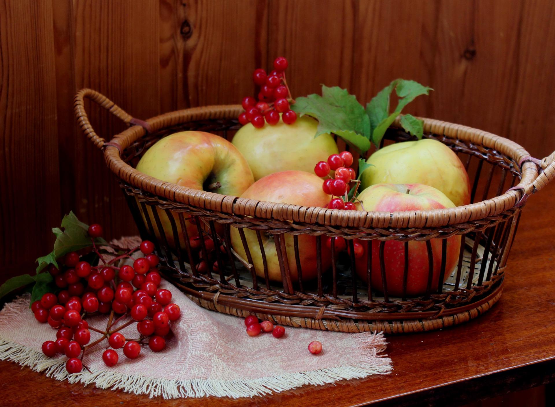что картинки рябины яблок отражает