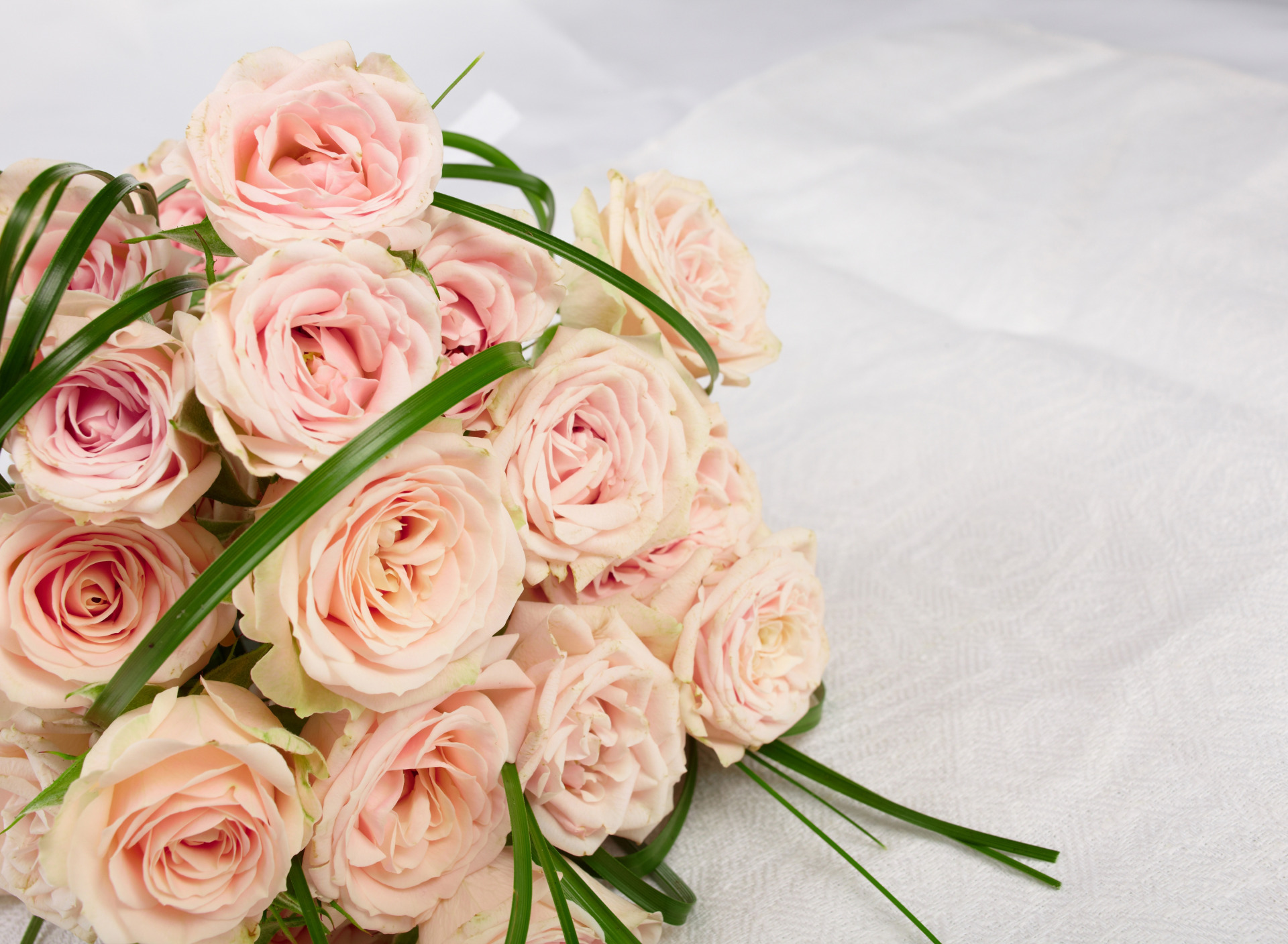 поздравление розе в прозе для рисования станет