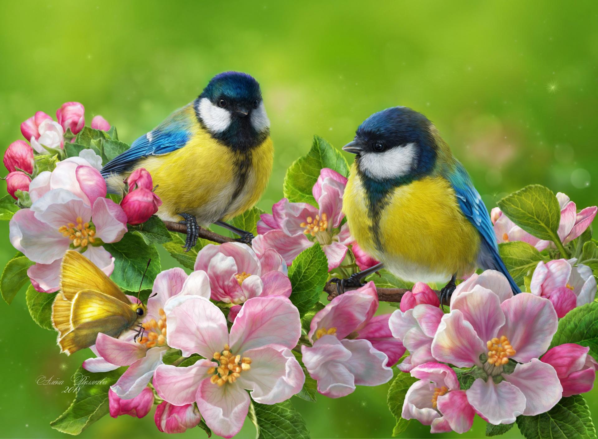 Открытки о птицах