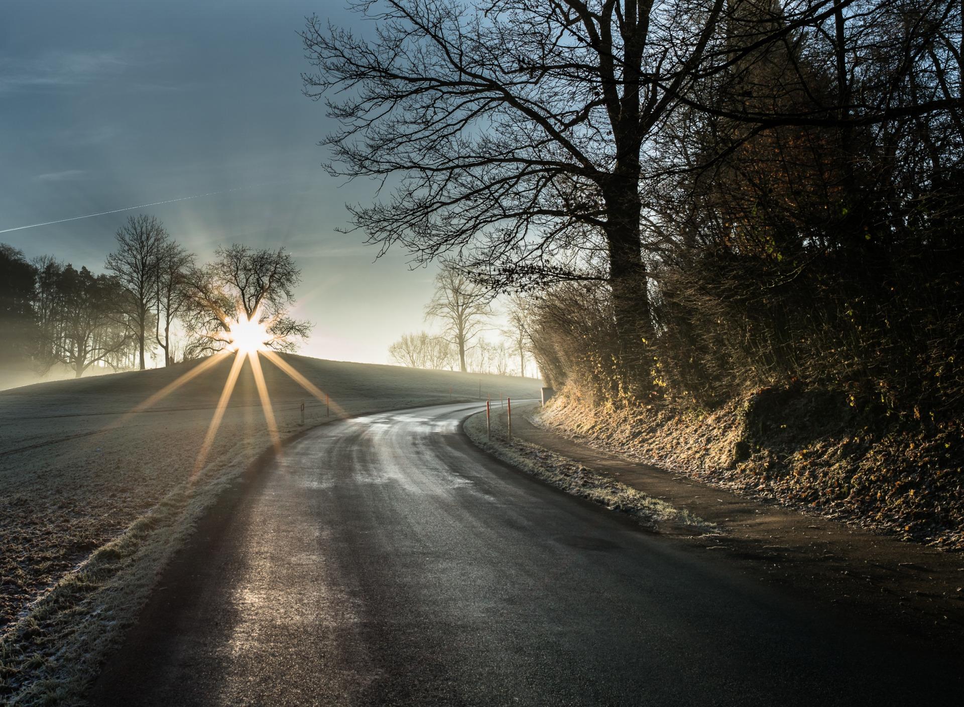 при красивые картинки дорога в тумане выбор местной жительницей сей