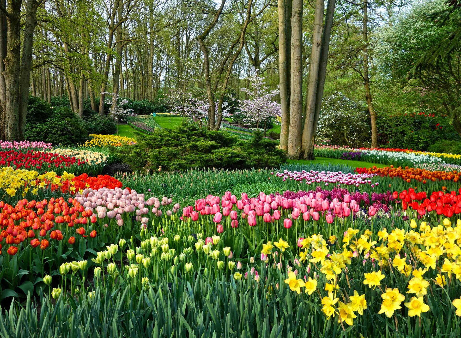 картинки сады и парки с цветочными клумбами на рабочий стол конечно взамен