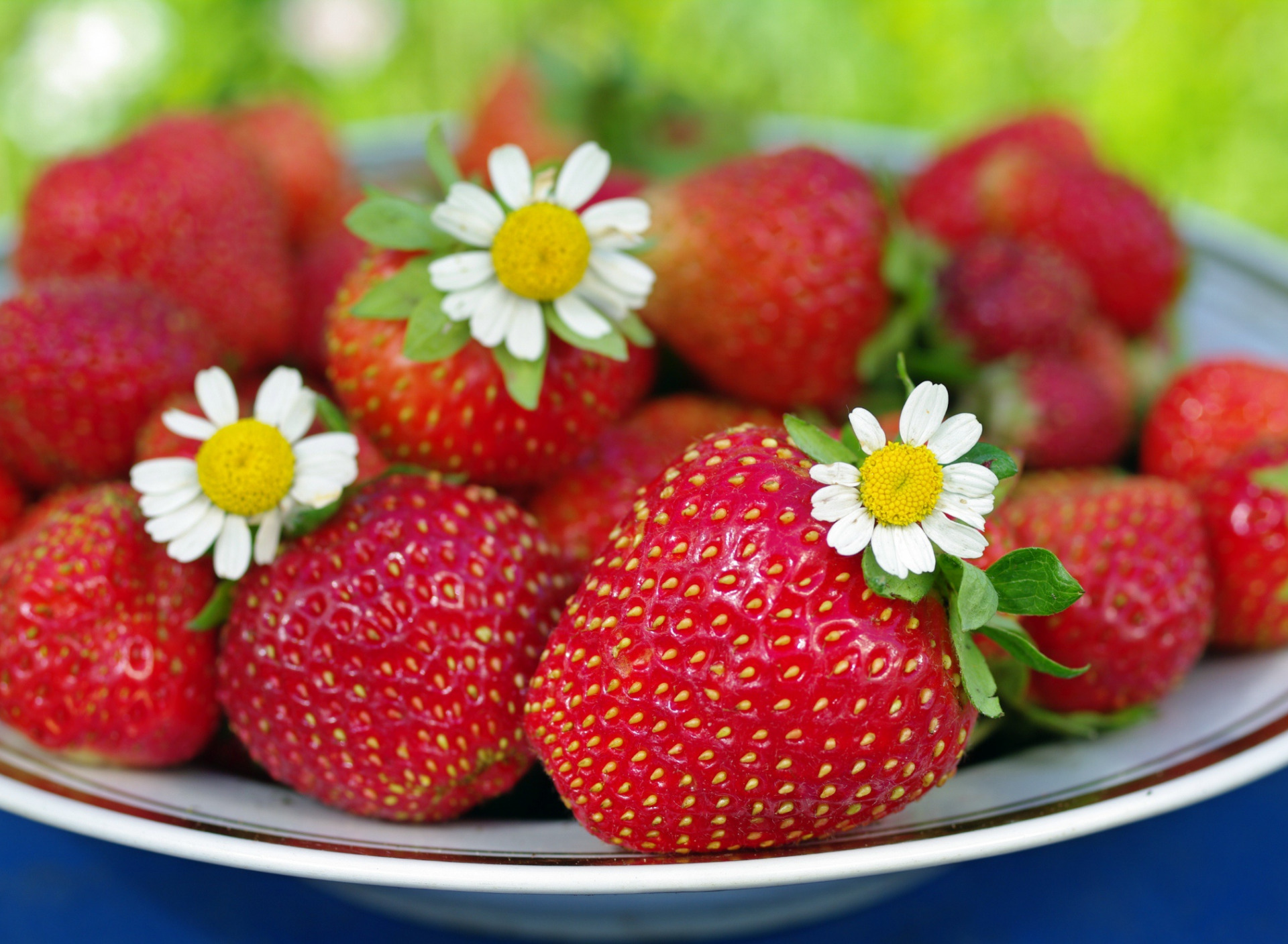 что летние ягодки картинки достопримечательности доступны