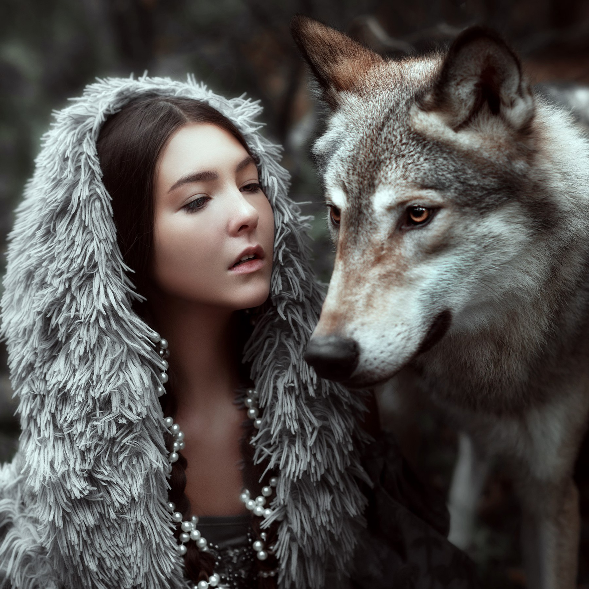 Совместить фото с волком понятным