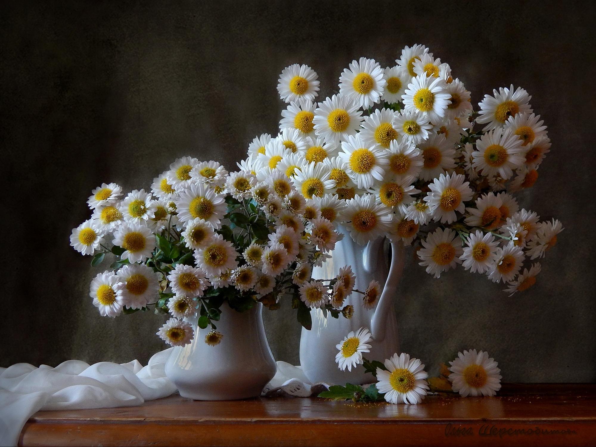 Букет цветов ромашки картинки, слив винограда