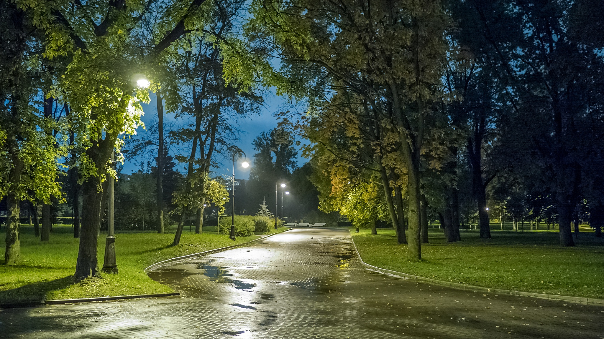 фото высокого разрешения городских парков россия завершил расследование