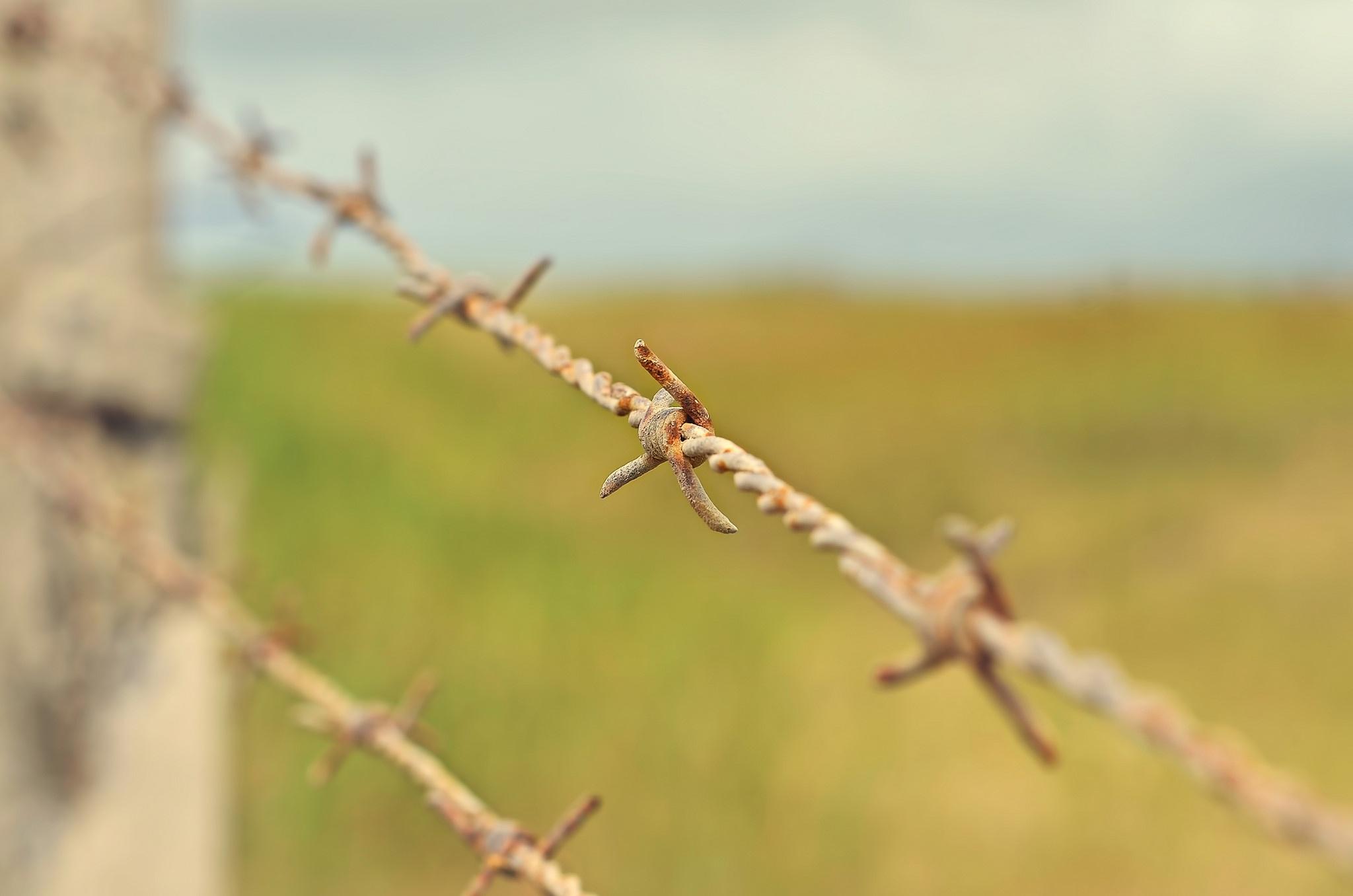 Колючая проволка на заборе  № 1701934 бесплатно