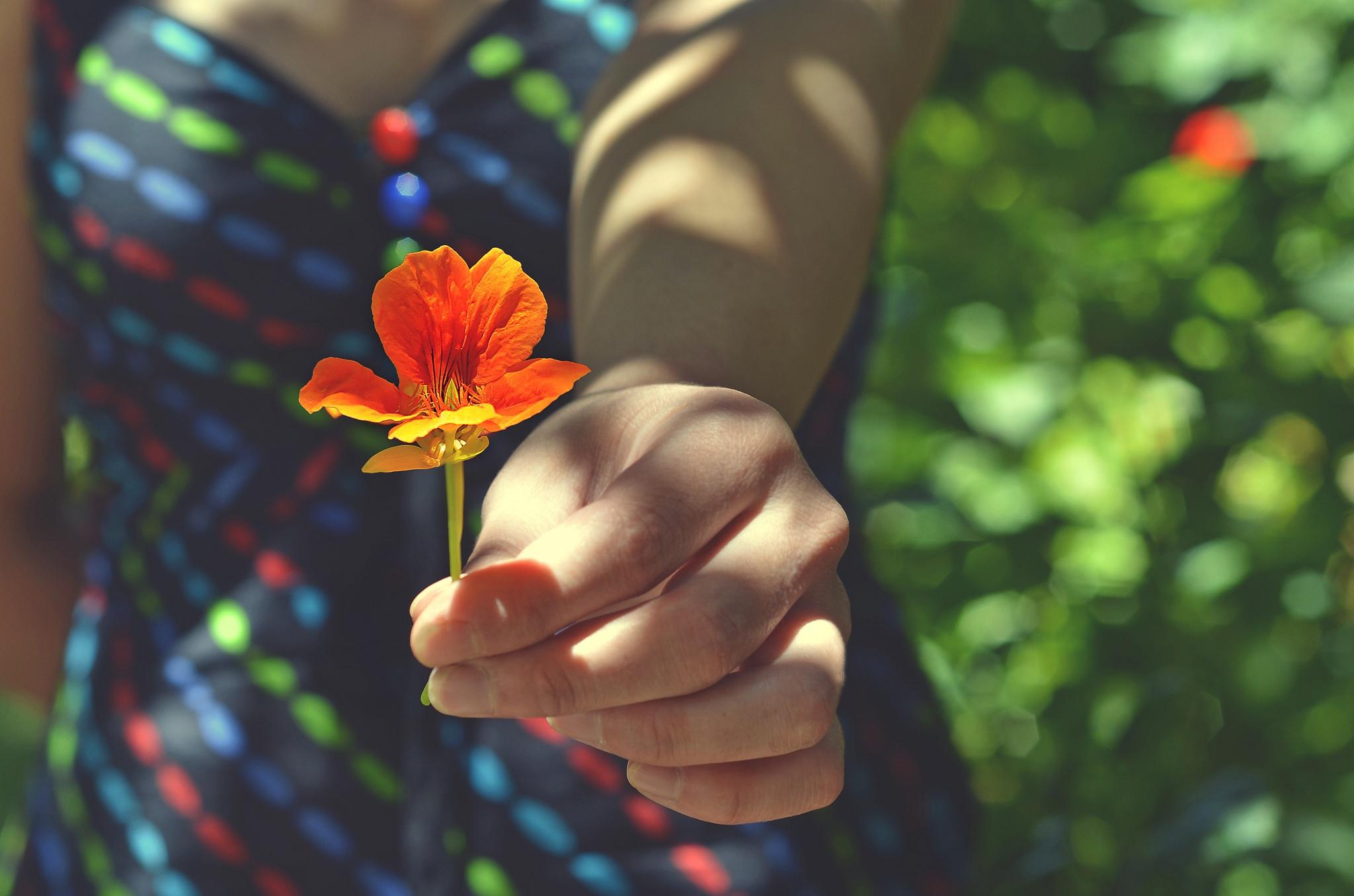 Картинка рук держащих цветы
