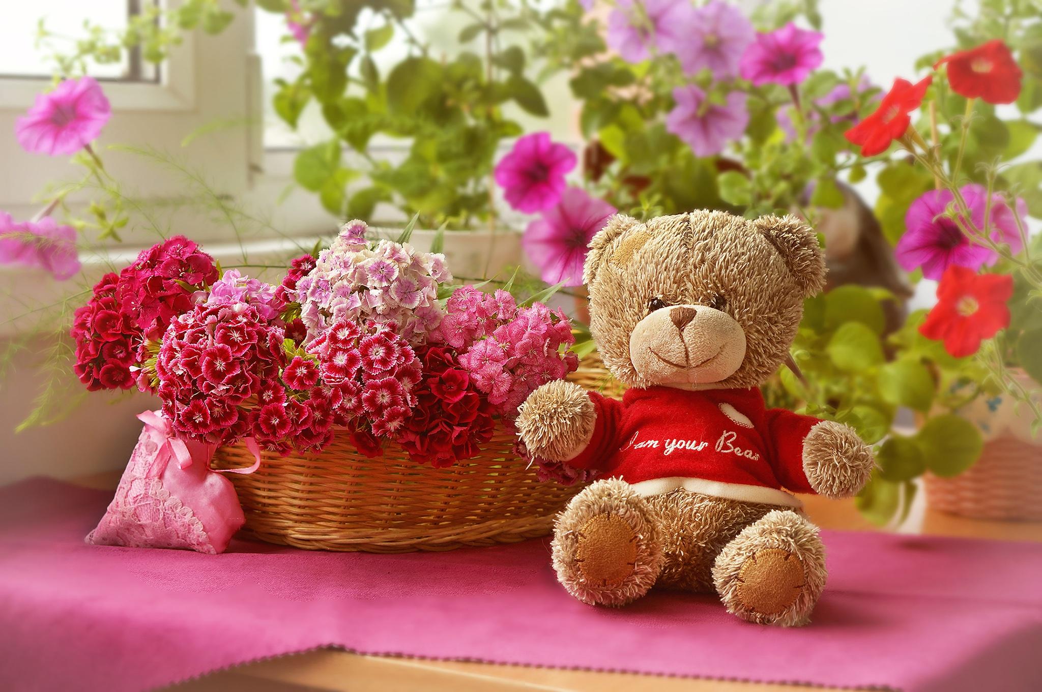 Красивые картинки с мягкими игрушками и цветами