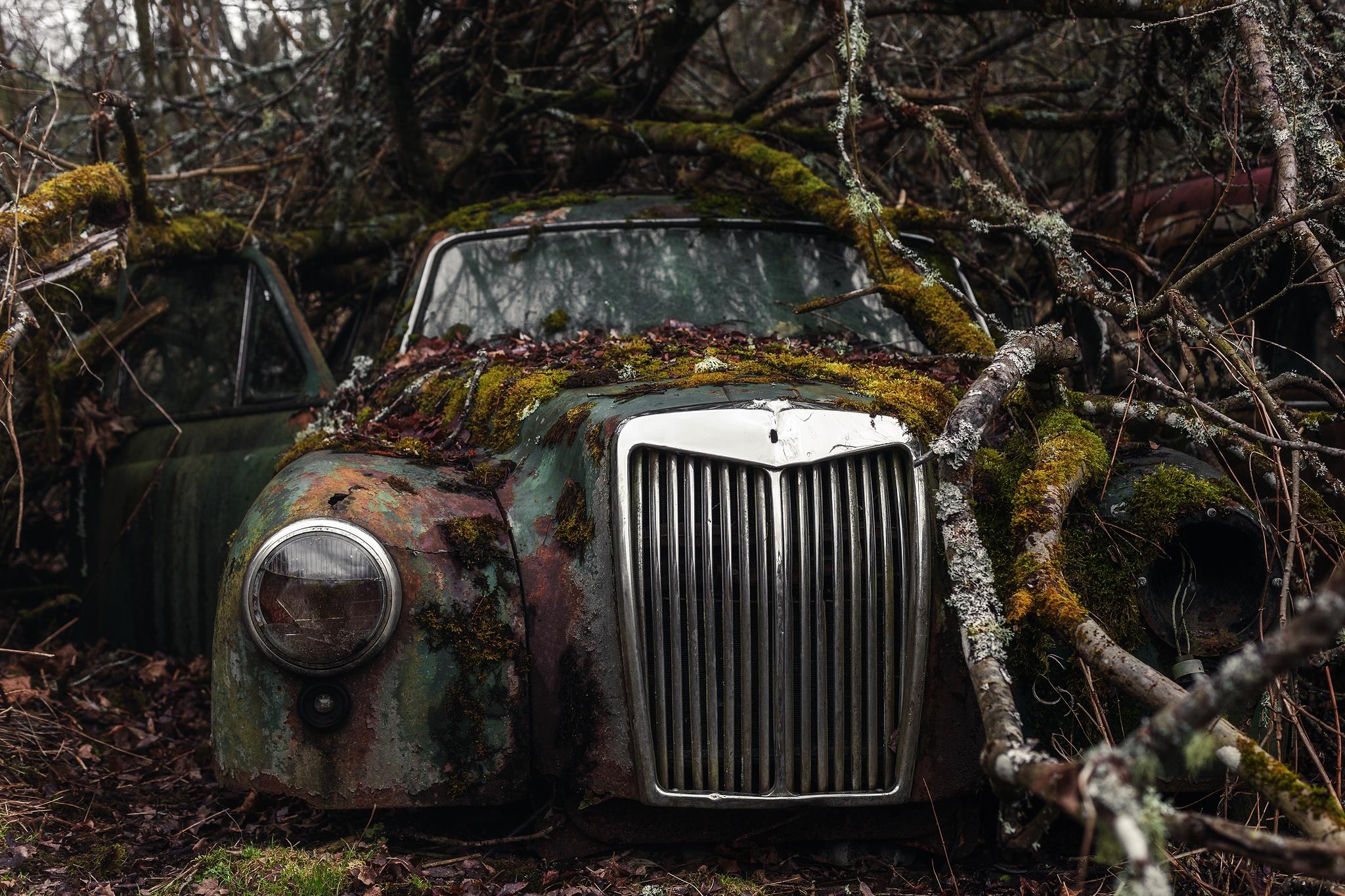 чтобы заброшенные авто редкие фото мох процедурой стоит
