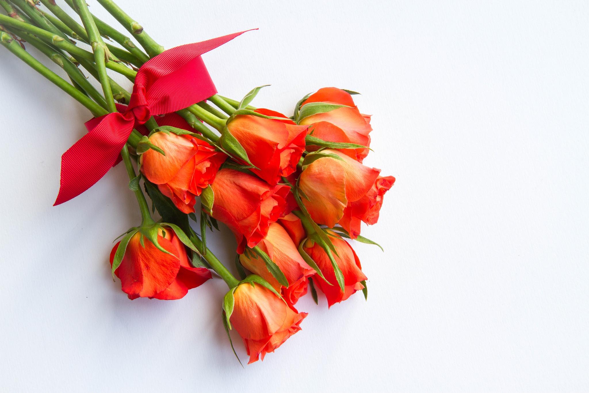 Белые тюльпаны, букеты праздничные на белом фоне