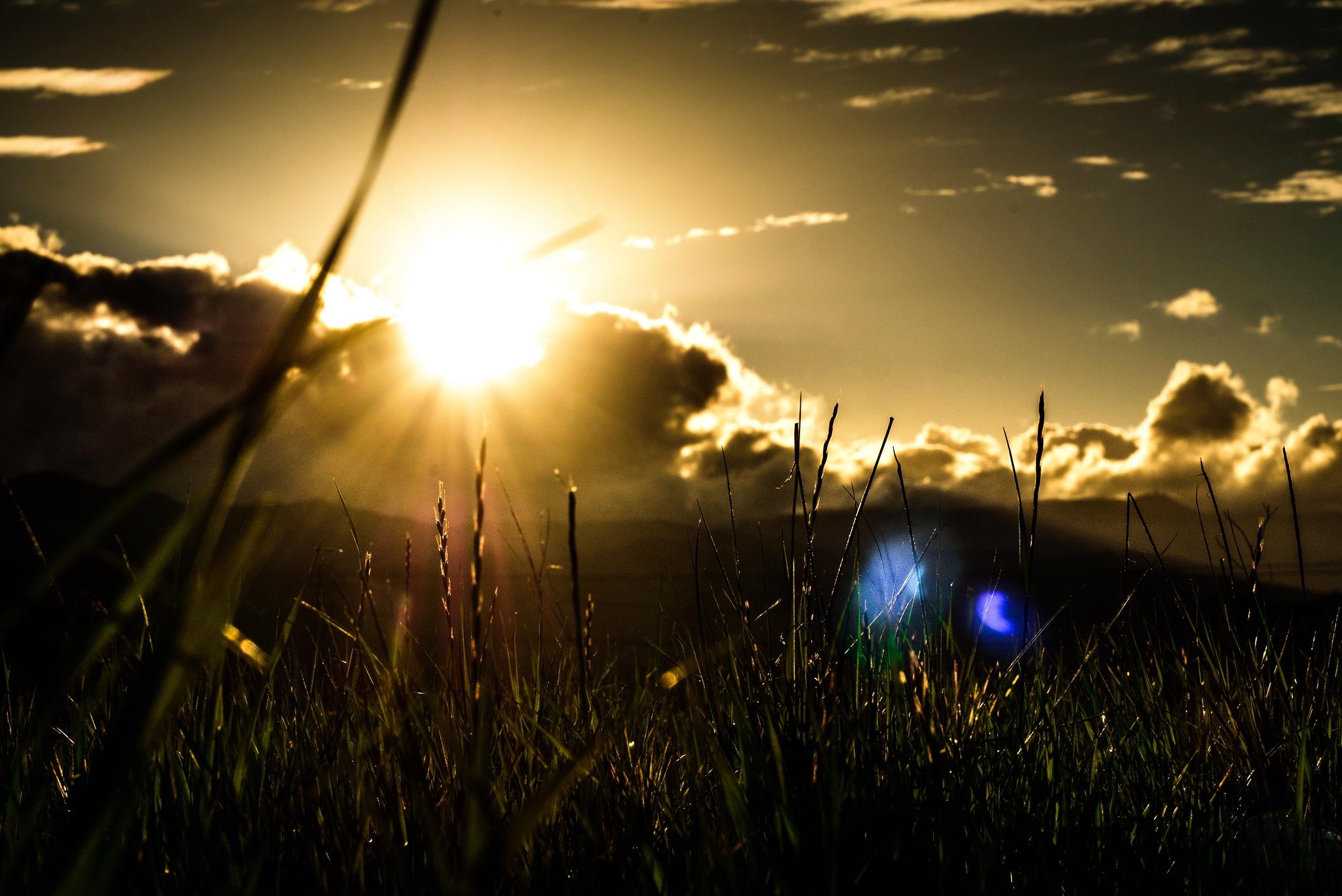 блики солнца картинки как только