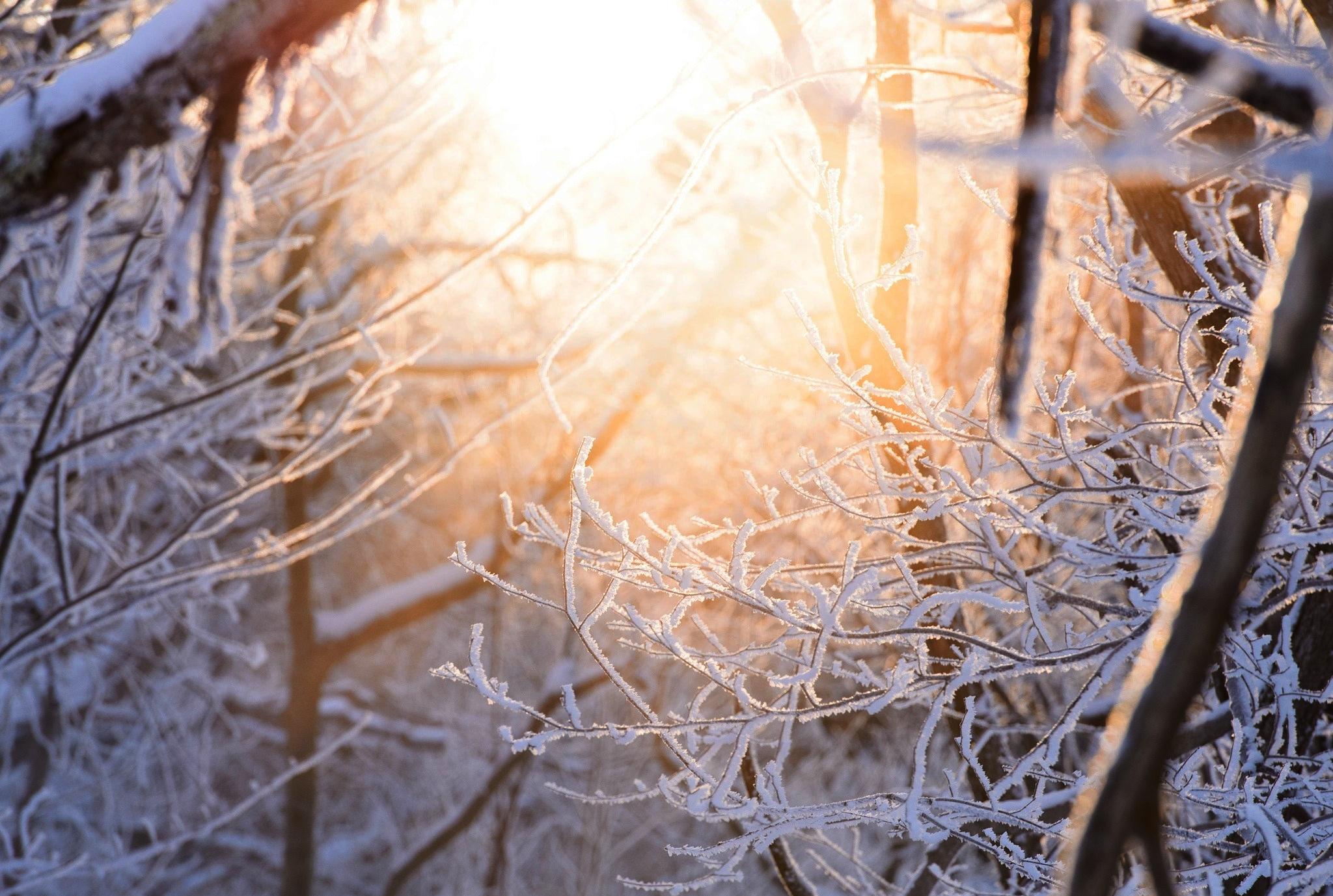 легкостью можно фото пейзажи зима снег макро практически полностью скопирована