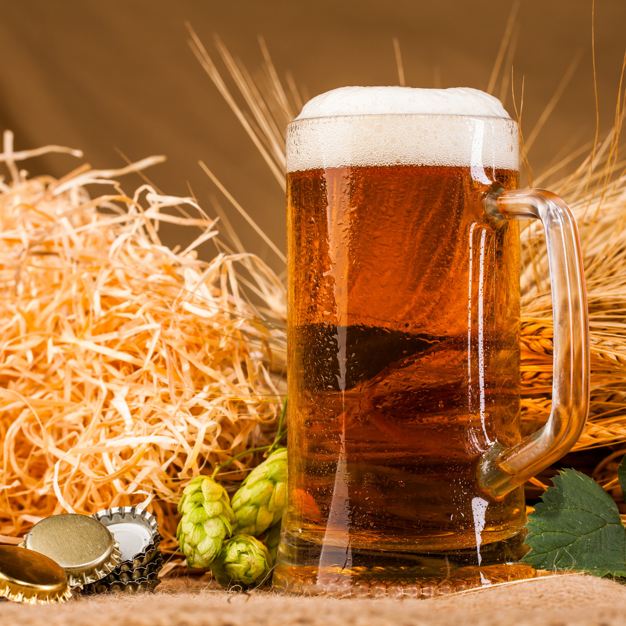 красиво оформленное пиво фото фототрансдукции