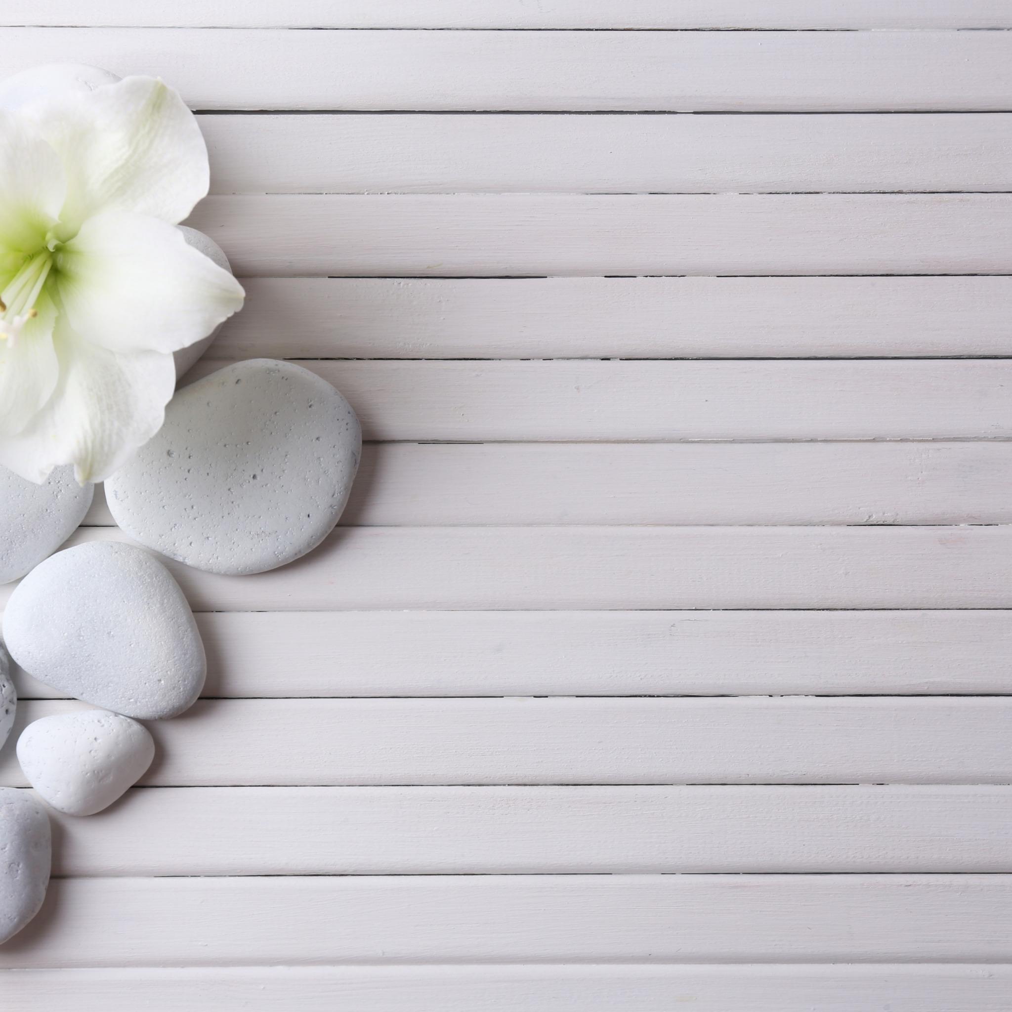 Красивый белый фон для предметного фото