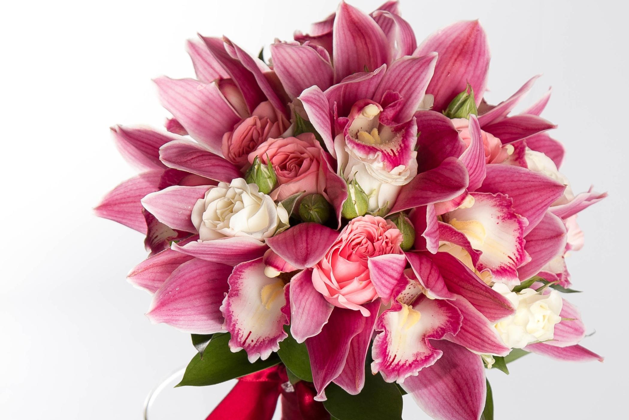 Фото цветы орхидеи букет