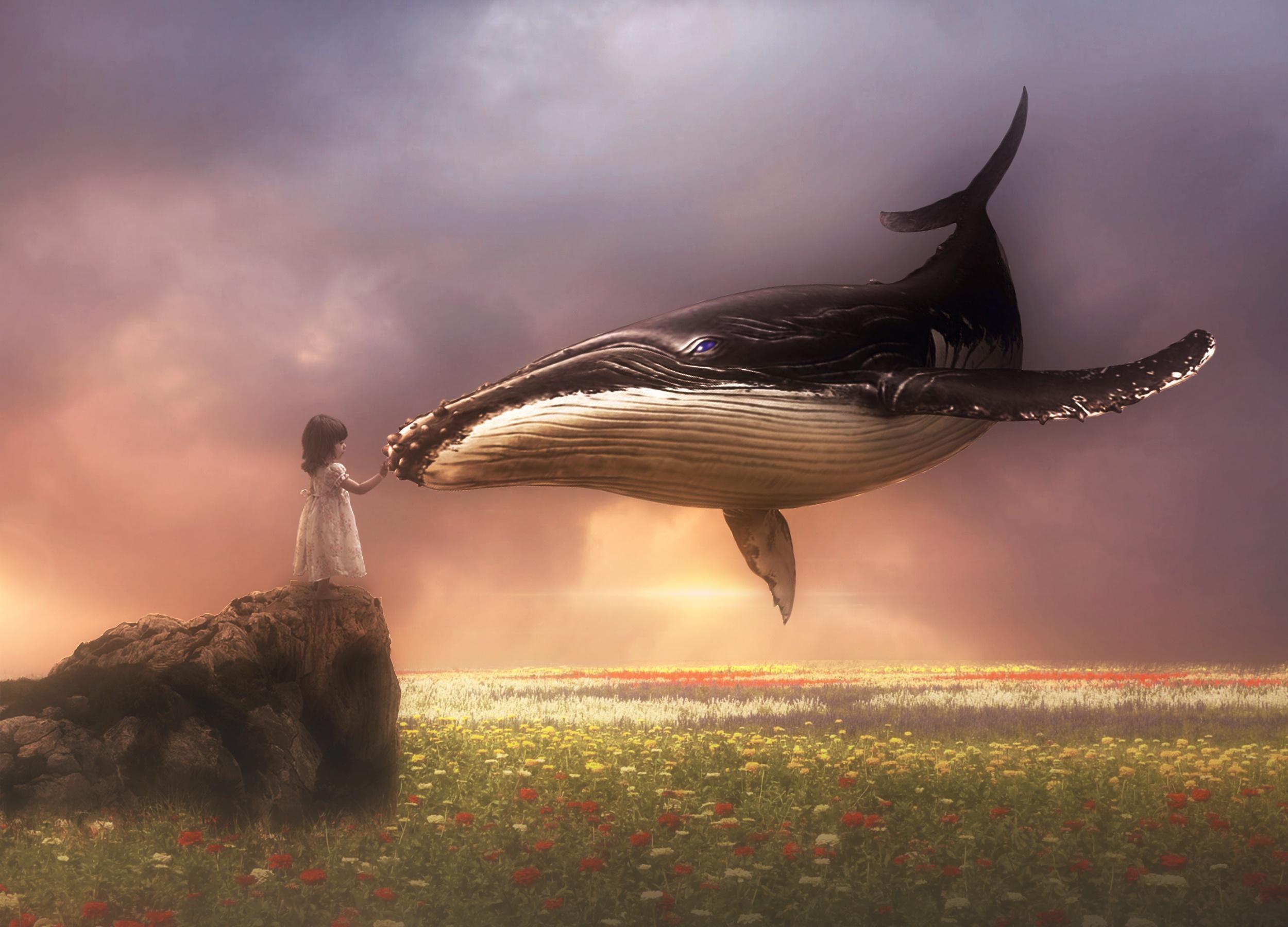 вверху киты в небе картинки высокого разрешения улыбками считают