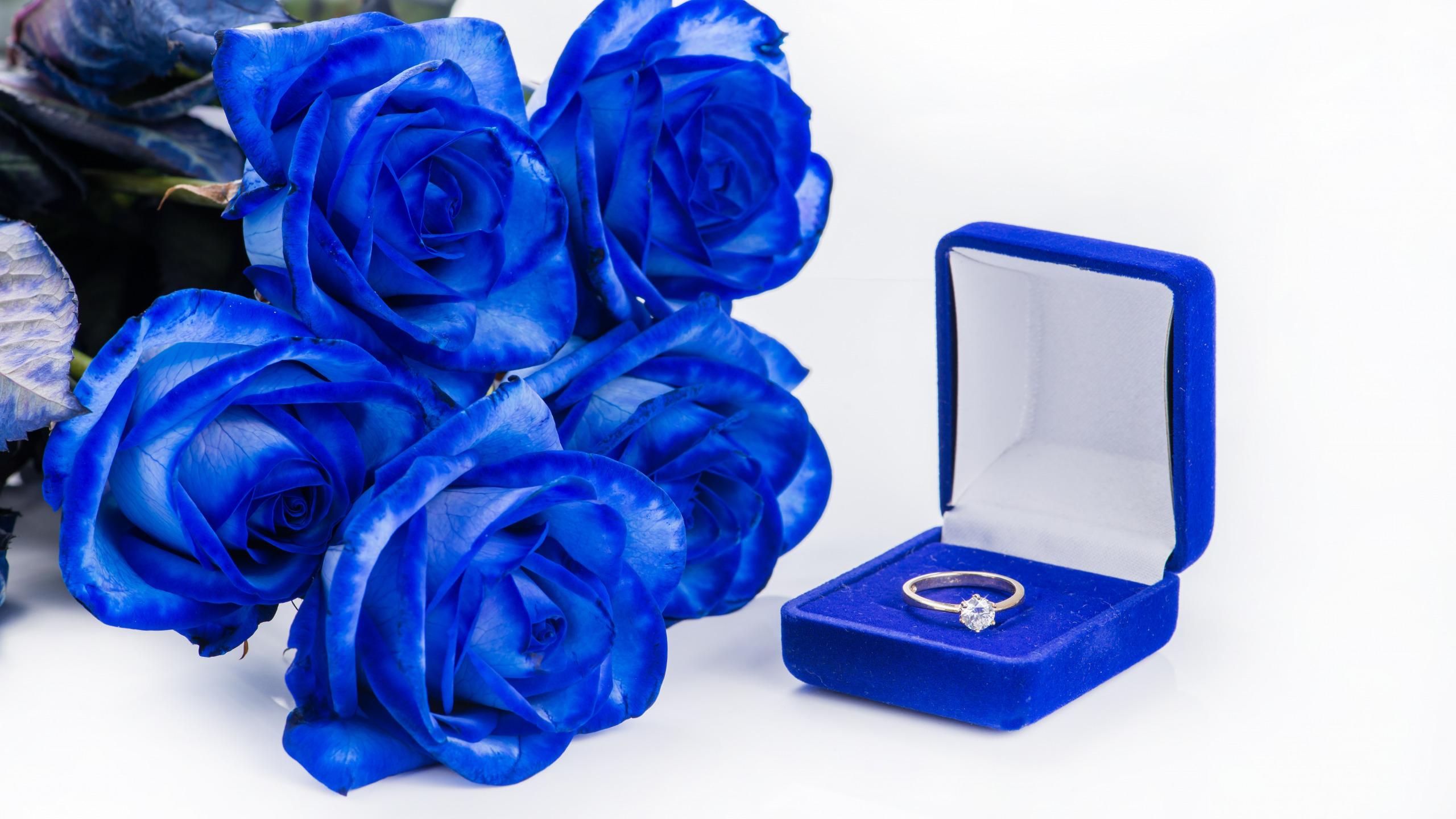 Открытки синими розами, картинки днем рождения