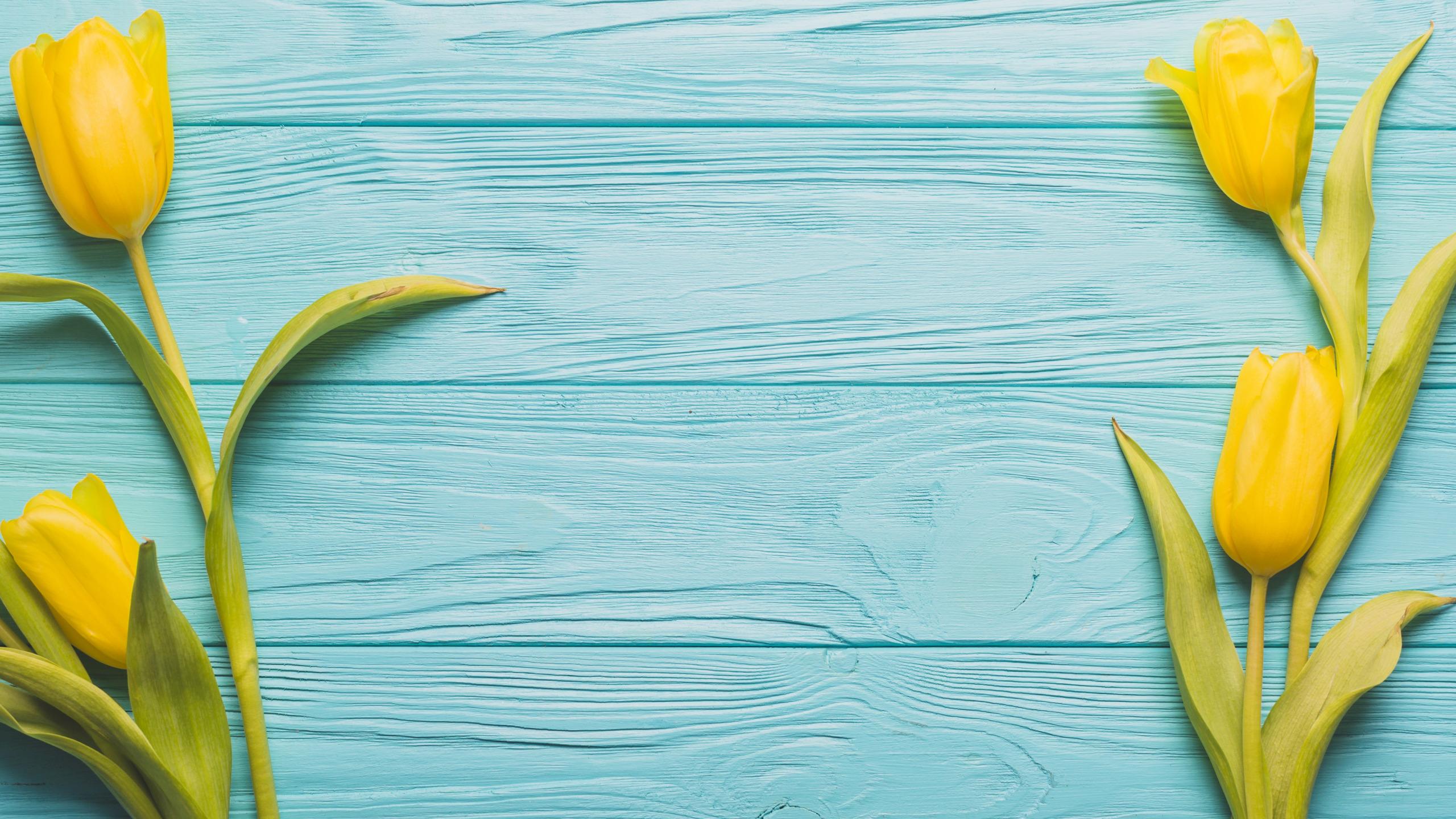крайне редко желто бирюзовые картинки рукоять цевье