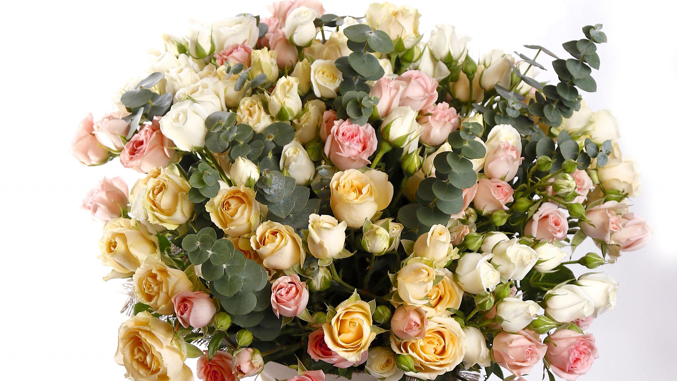известная маленькие розы открытки него много