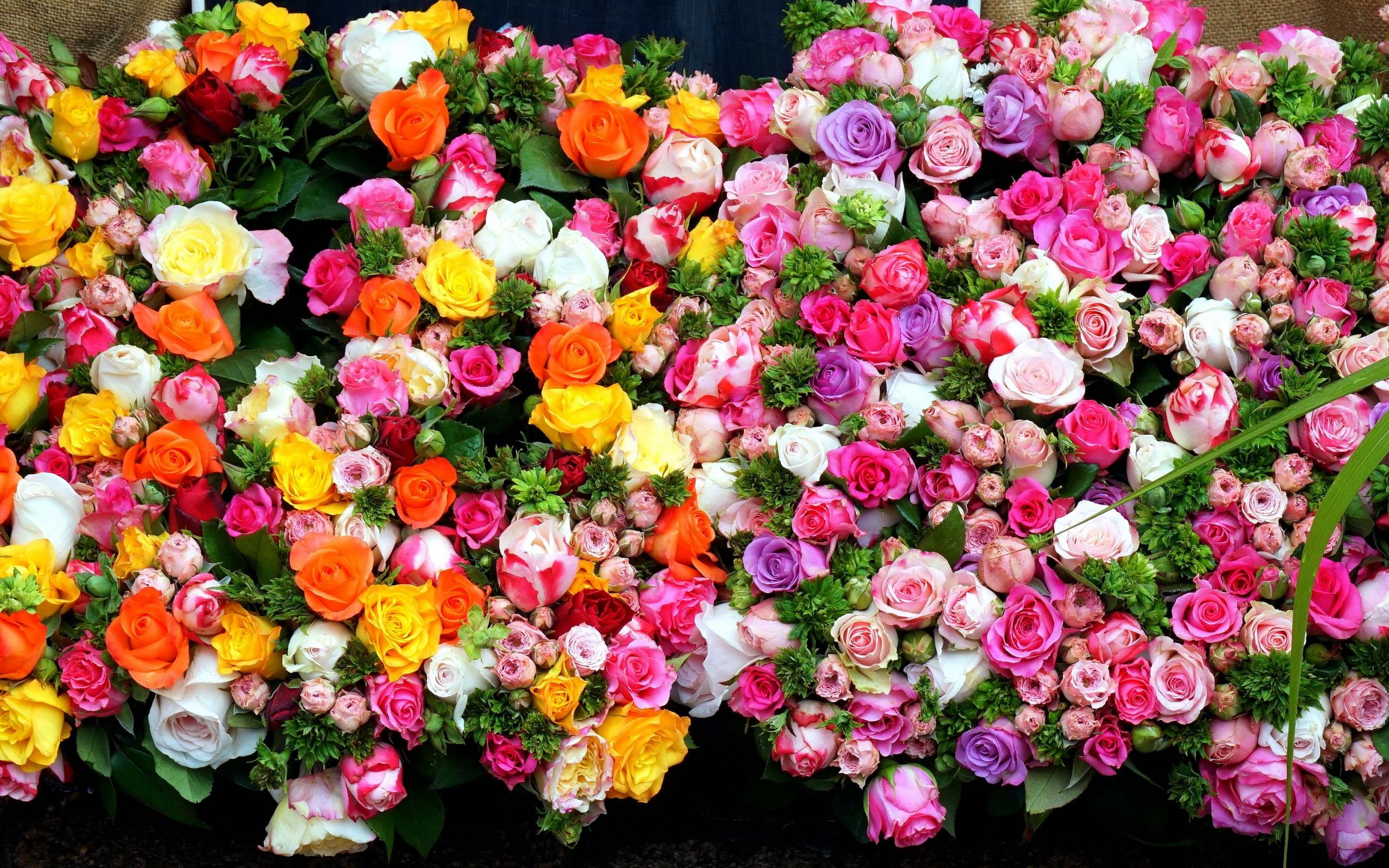 Много открыток цветы букет
