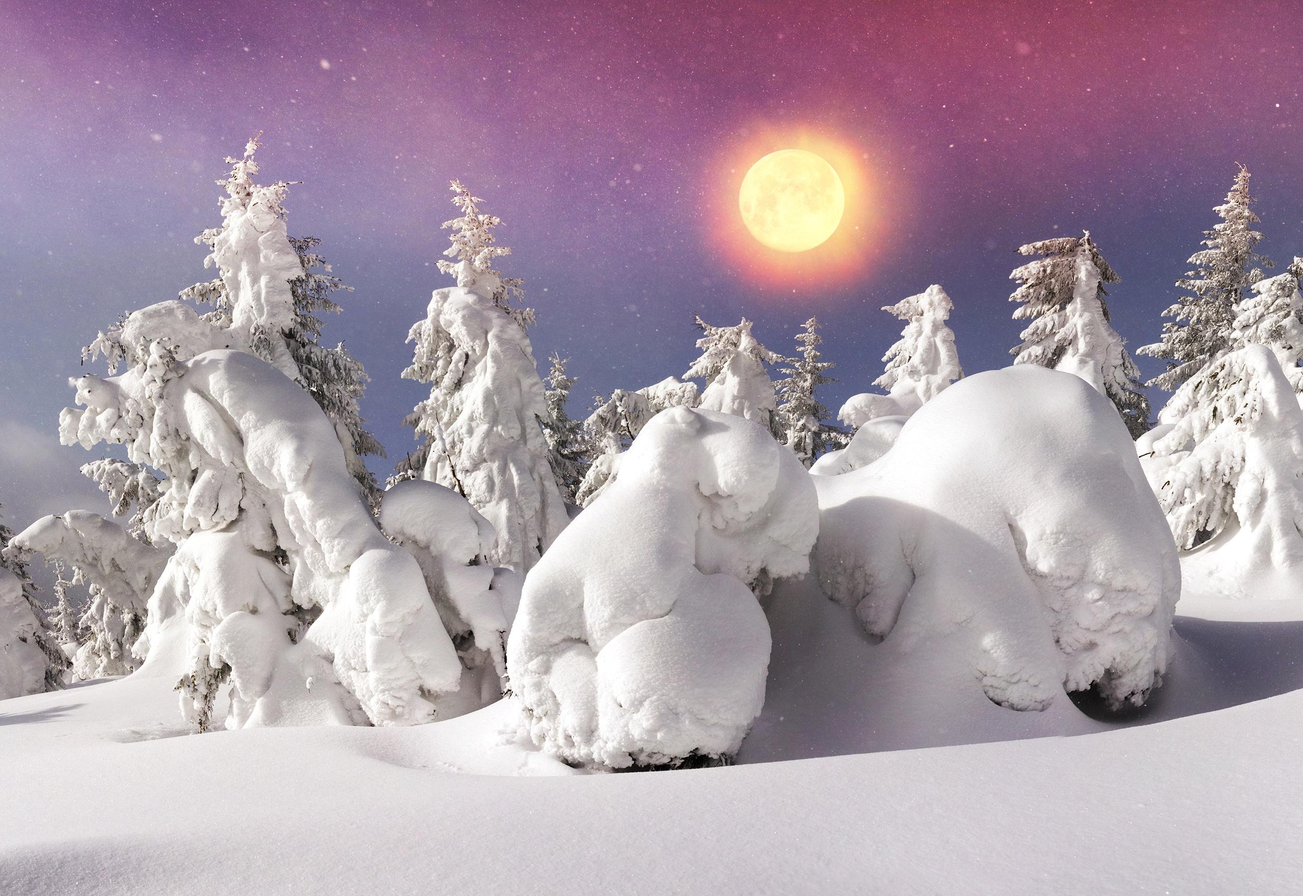 Новым годом, картинки зима природа прикольные