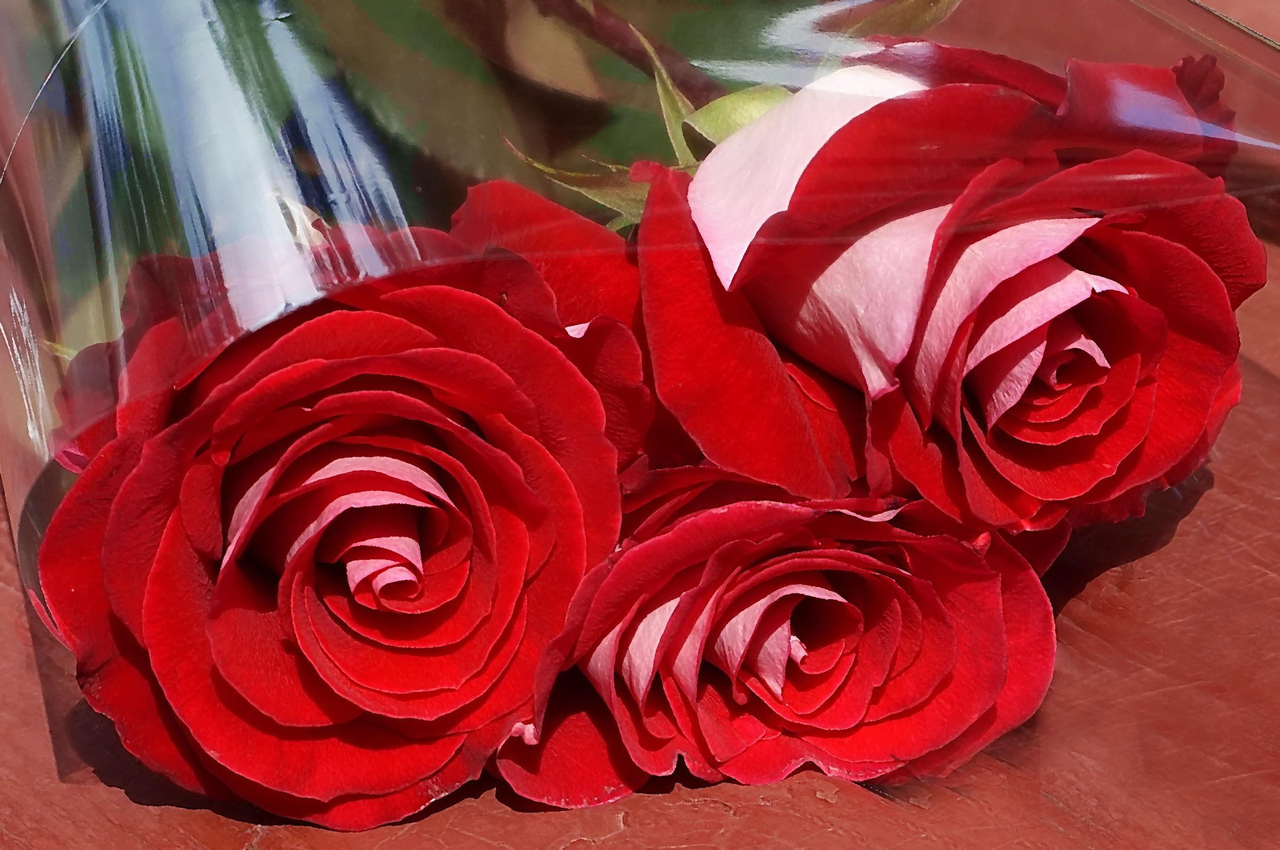 Открытки букеты из роз или просто одиночные розы - 3D галерея 100