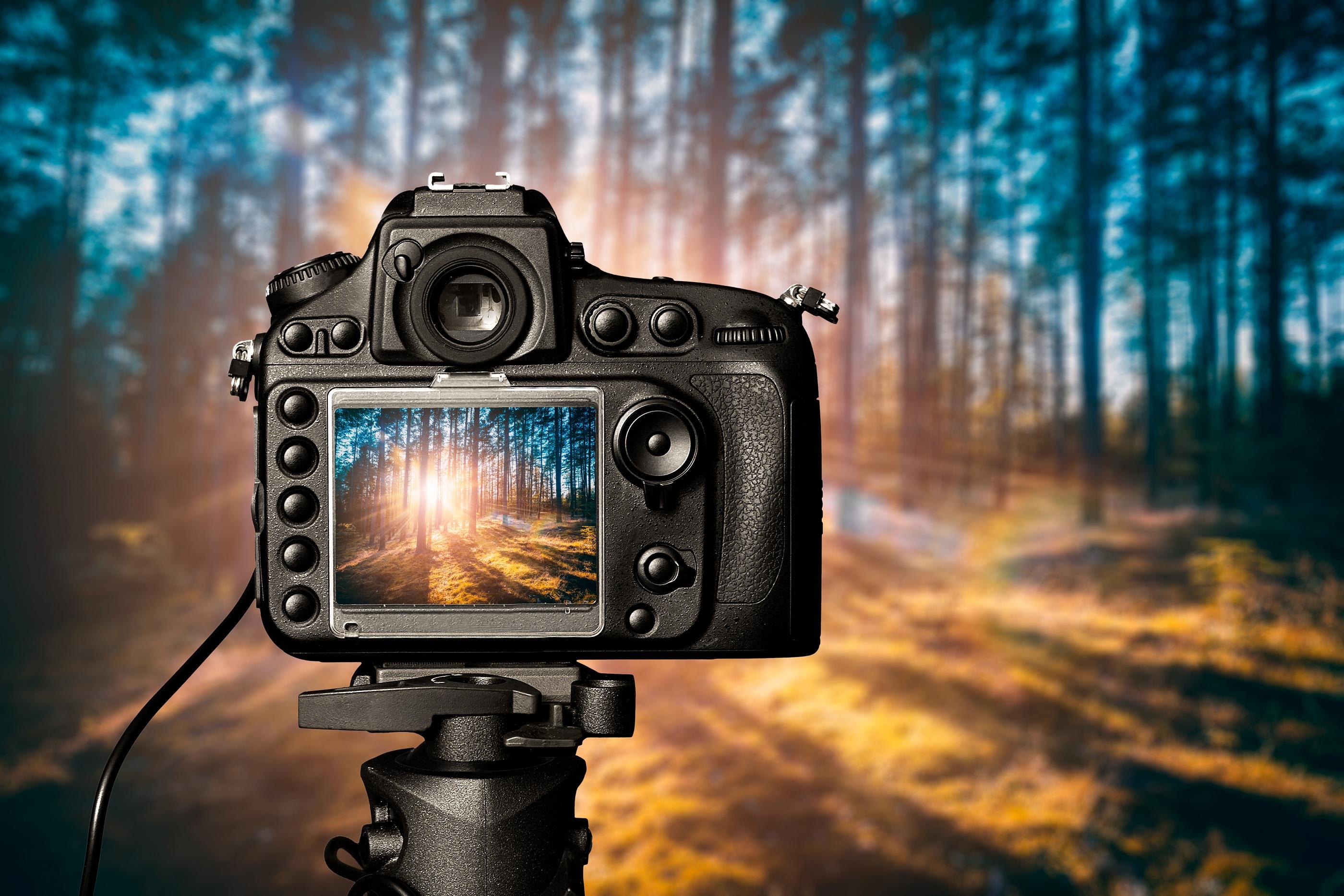 сушилась какую выбрать фотопленку для фотографии пейзажей картины впечатляют