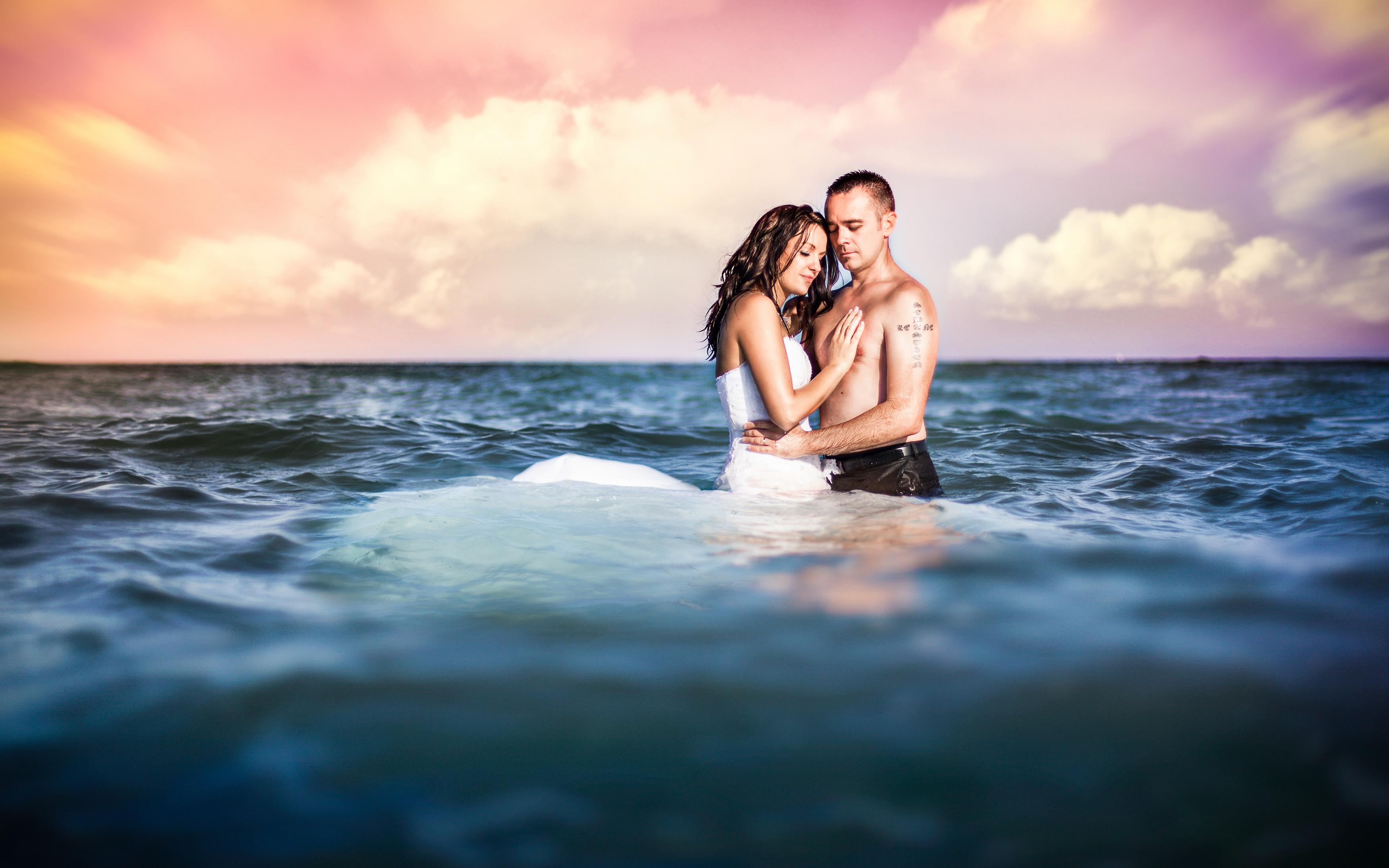 красивые картинки океан любви куст гортензии имеет