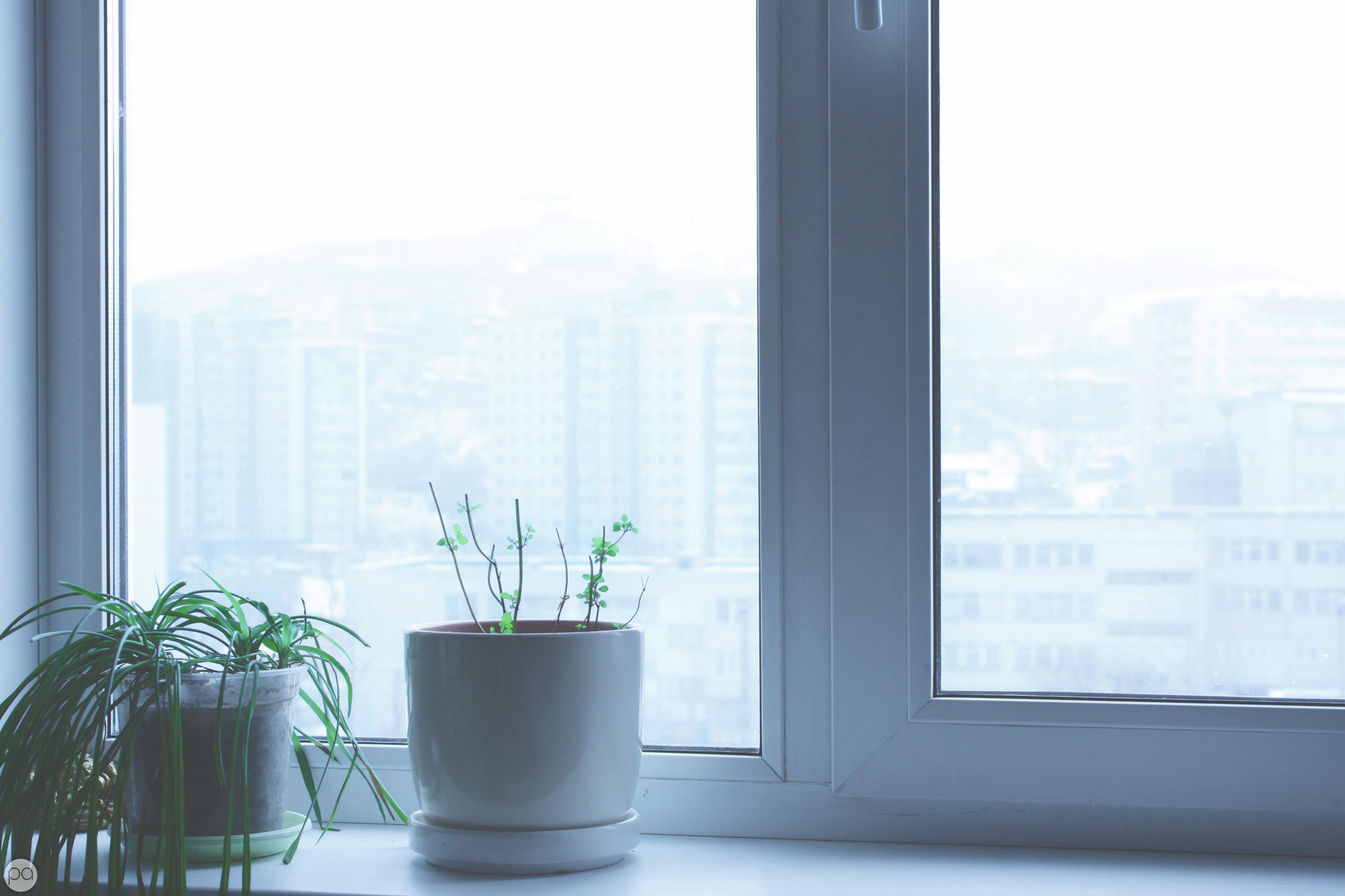 картинка фон окна чернобровина