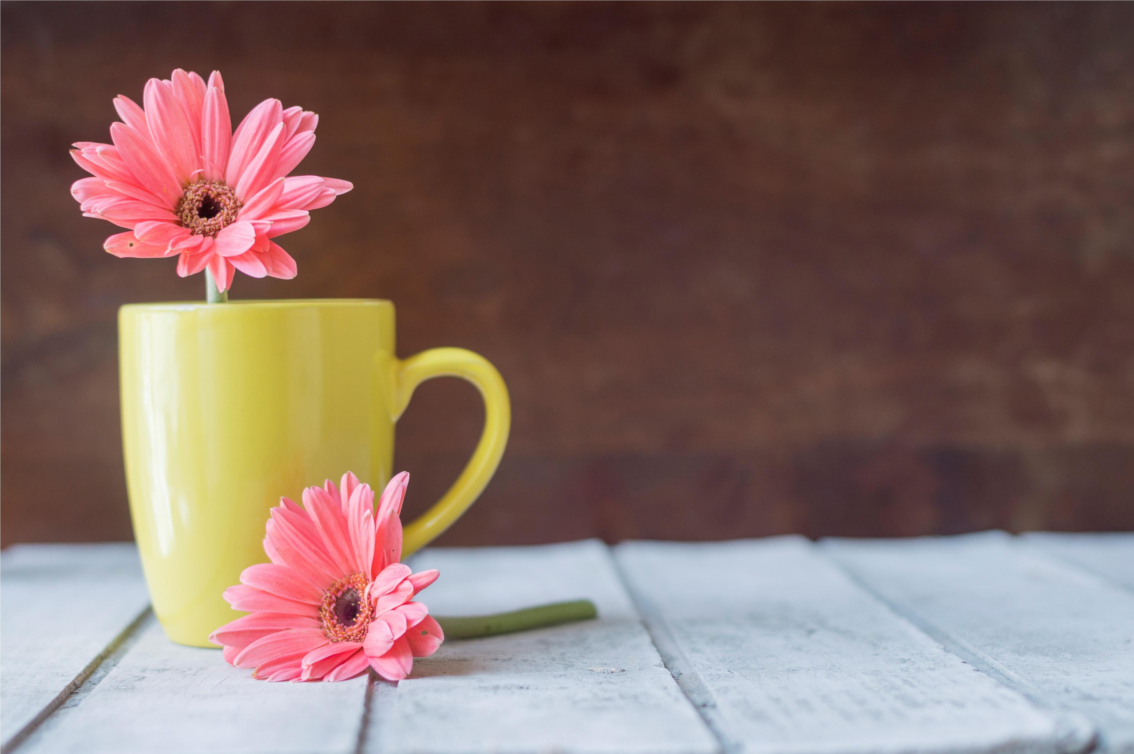 Картинки чашка и цветы