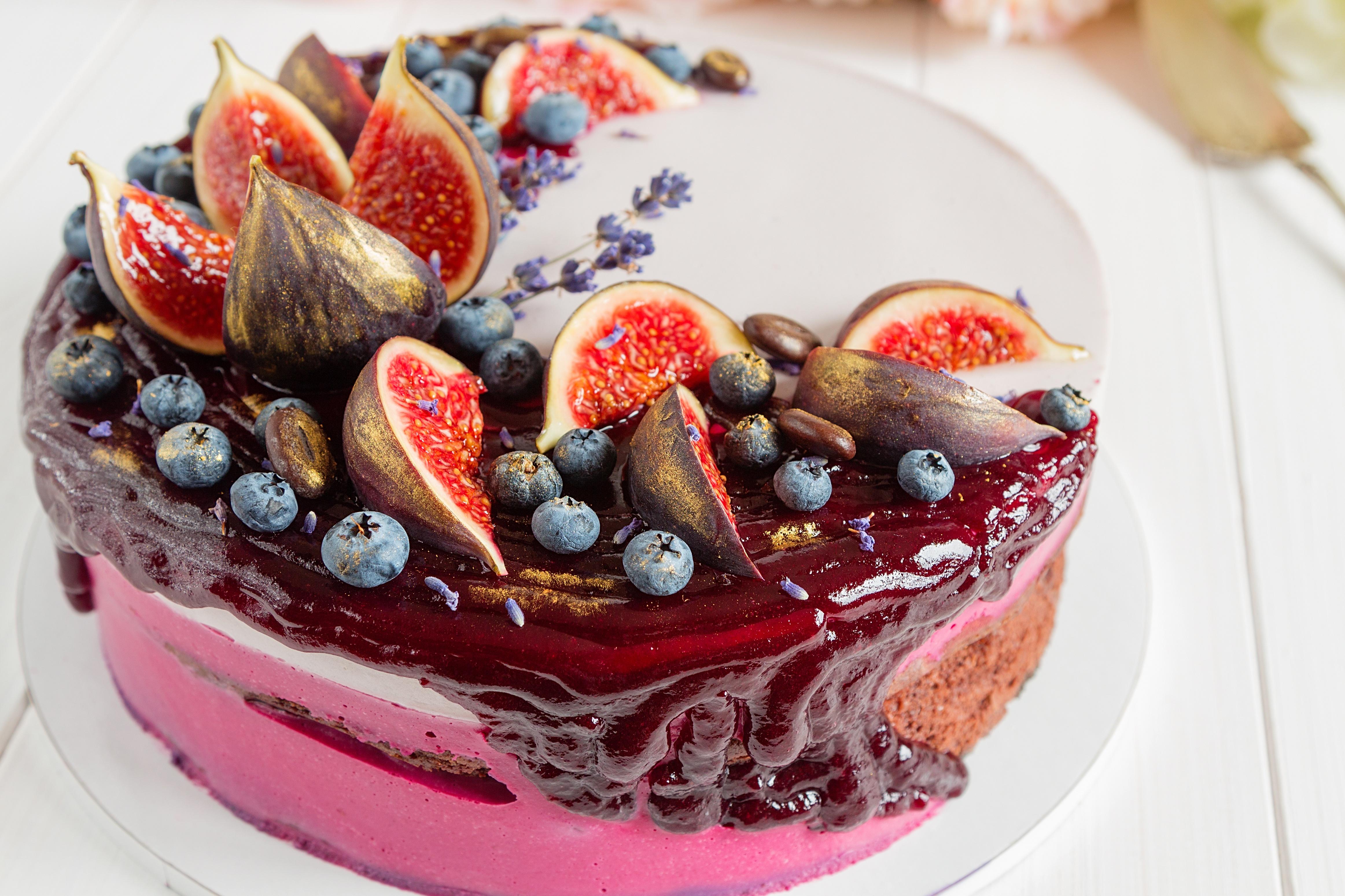 Открытки с украшением торта, картинки животных лесу