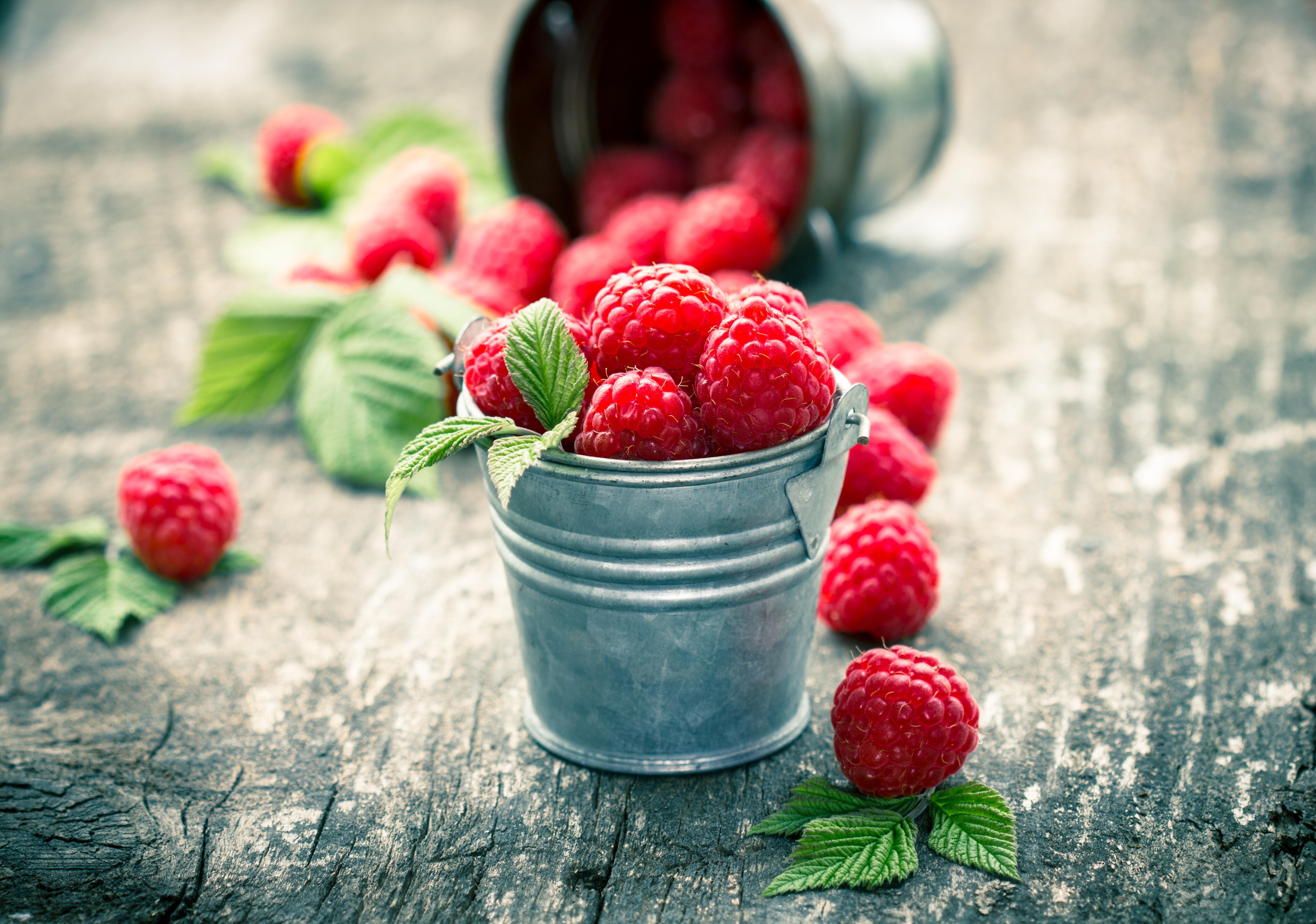 еда малина ягоды  № 2884596 загрузить