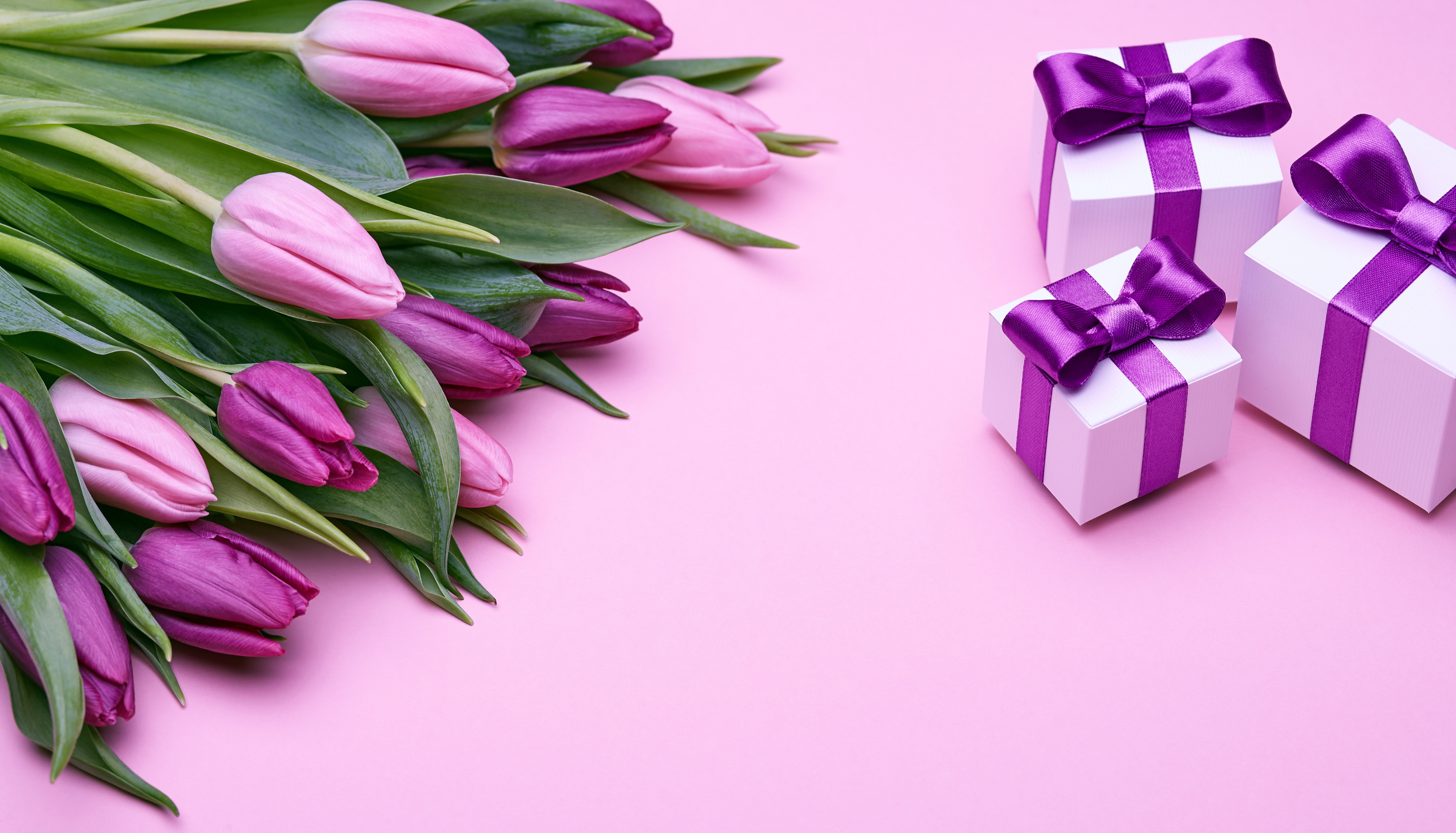 фиолетовые цветы в коробке  № 2541441 без смс