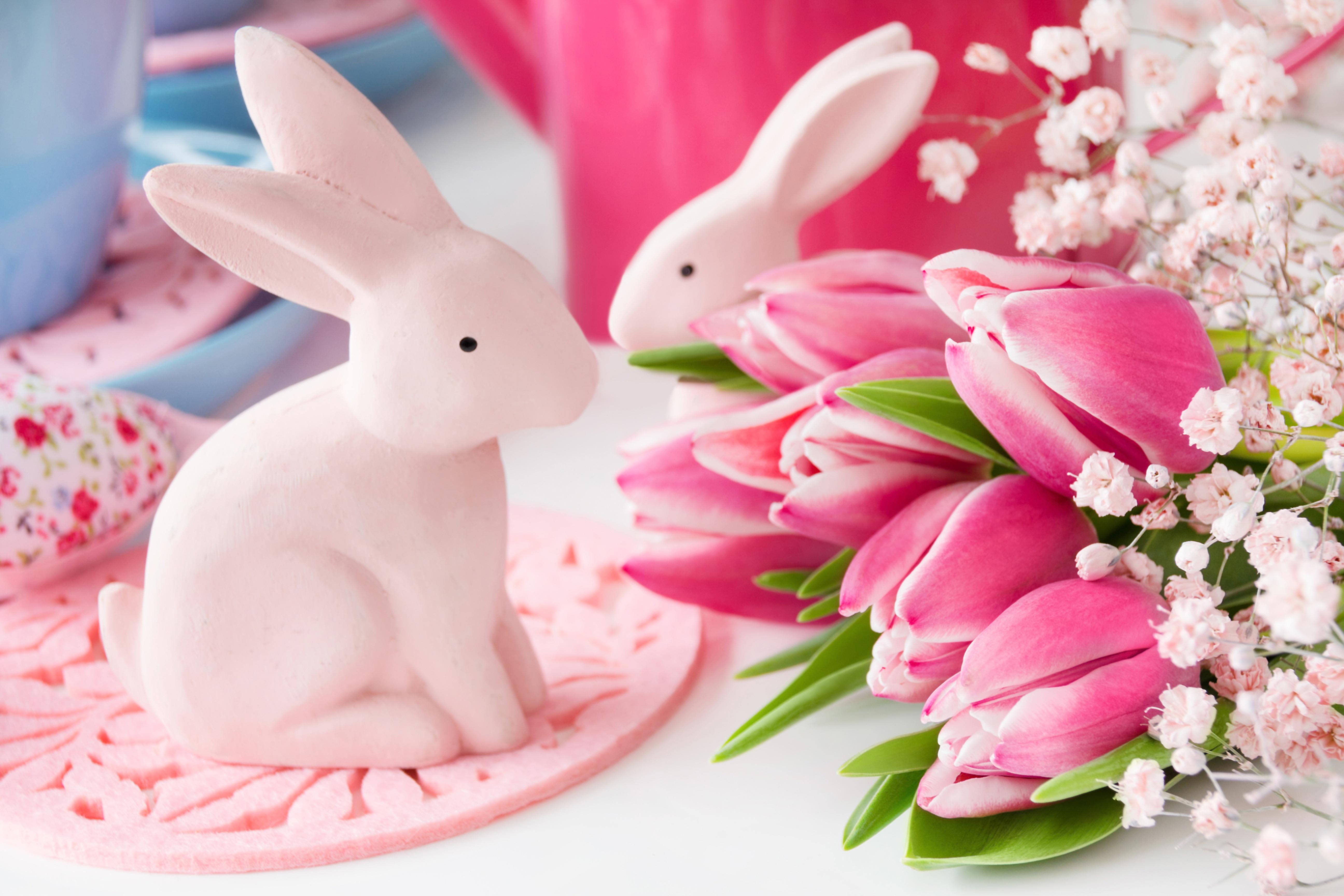 кролик с тюльпанами  № 1144599 бесплатно