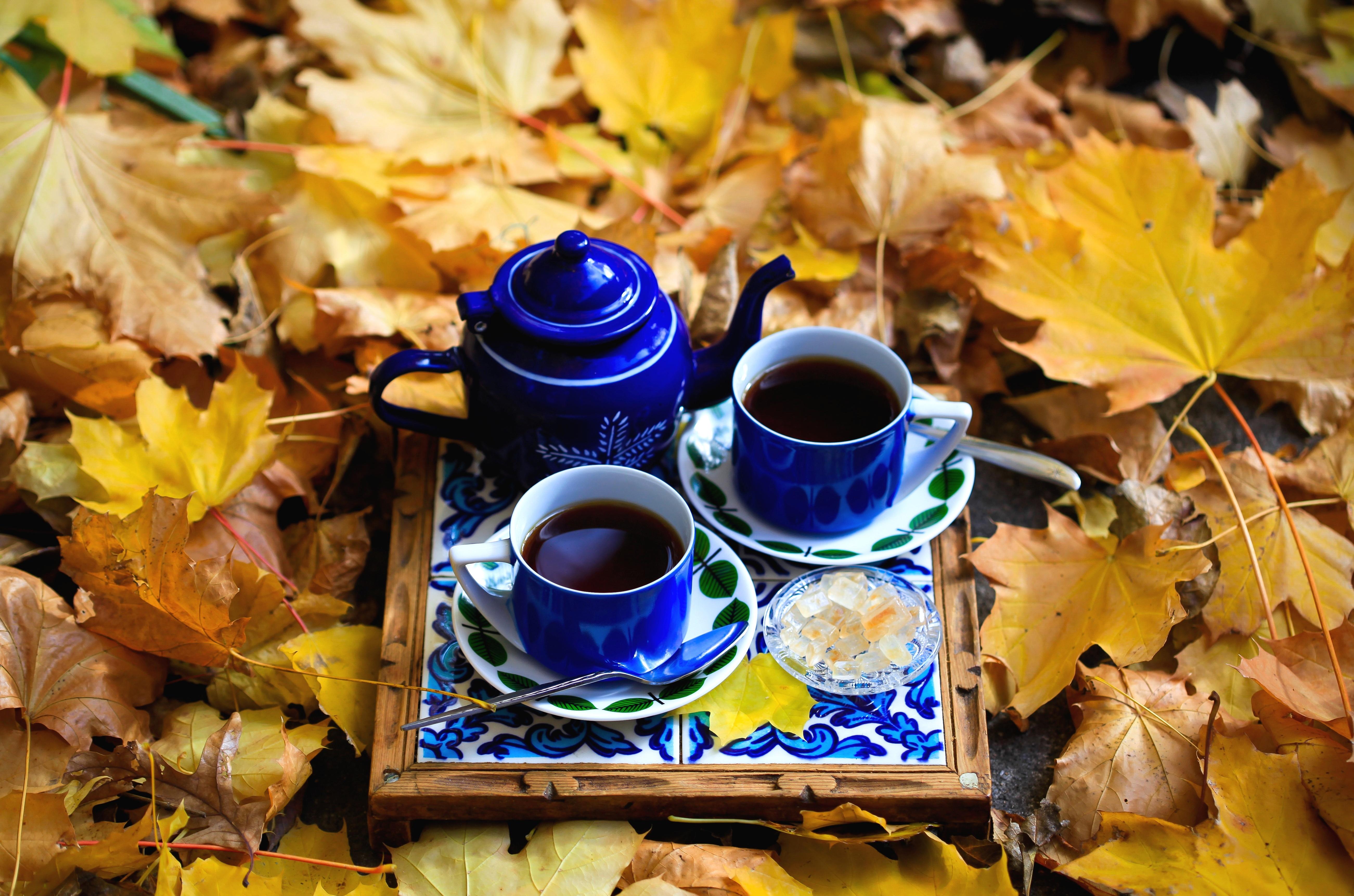 красивые картинки чай кофе и осенние листья