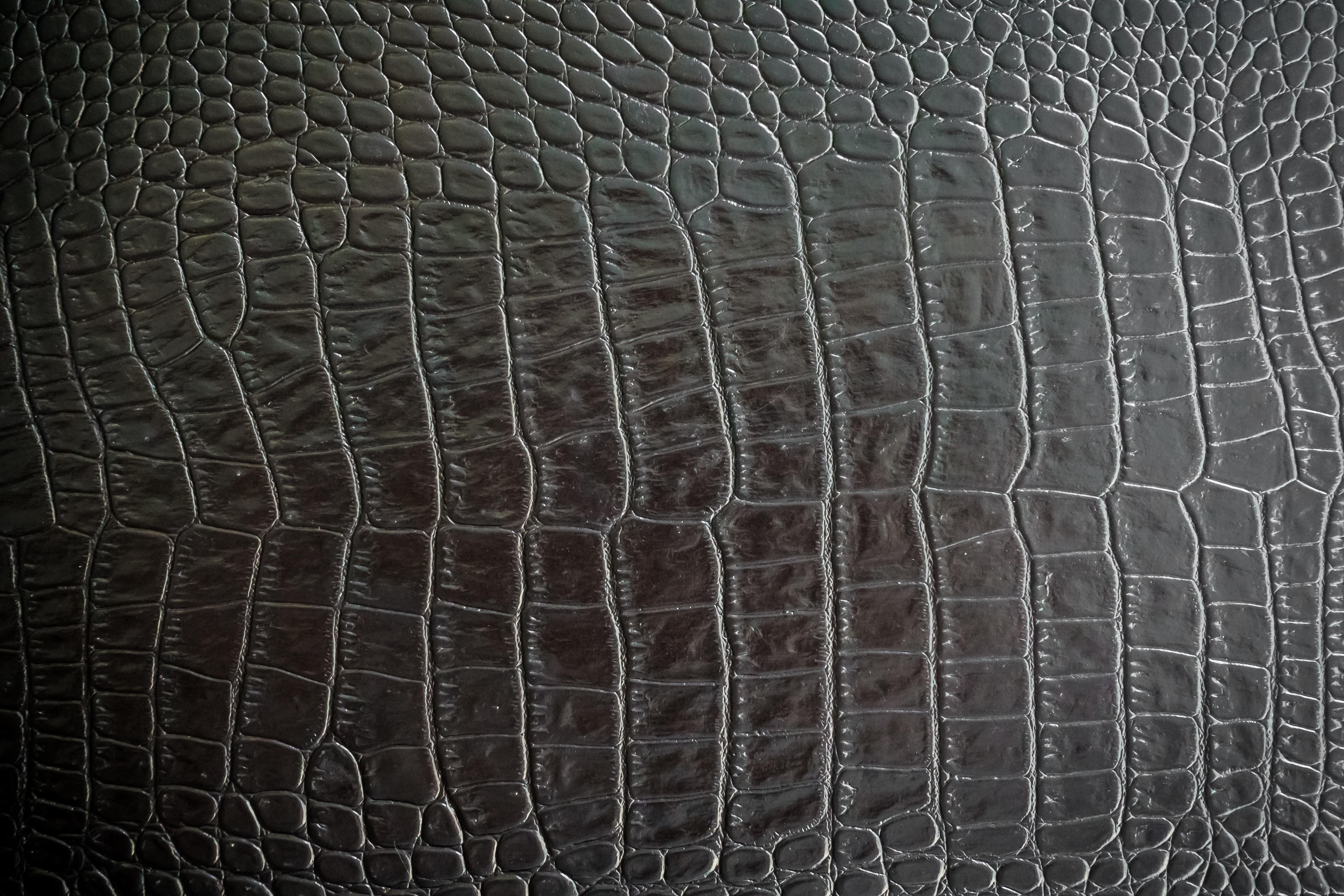 Рисунок крокодиловой кожи