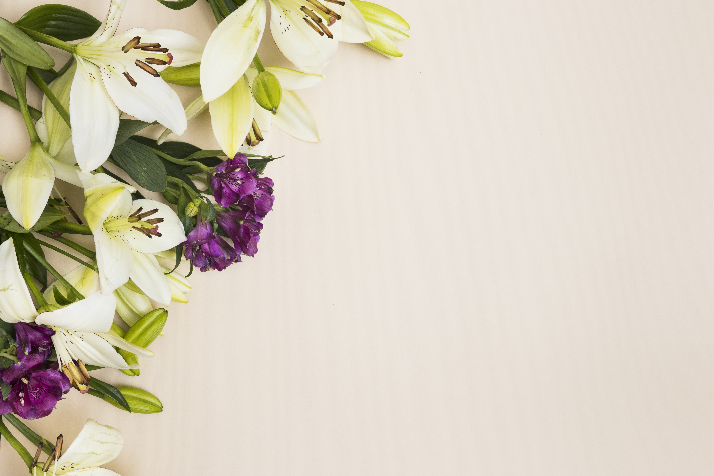 Картинки весенние цветы на рабочий стол красивые вами