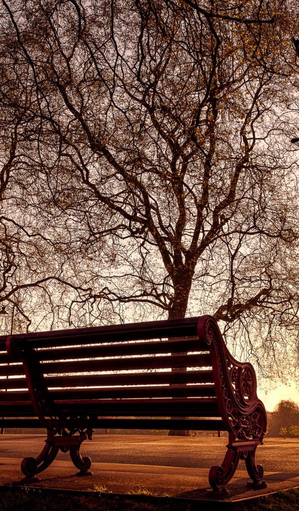 самых картинки осень скамейки фонарь самое кафе
